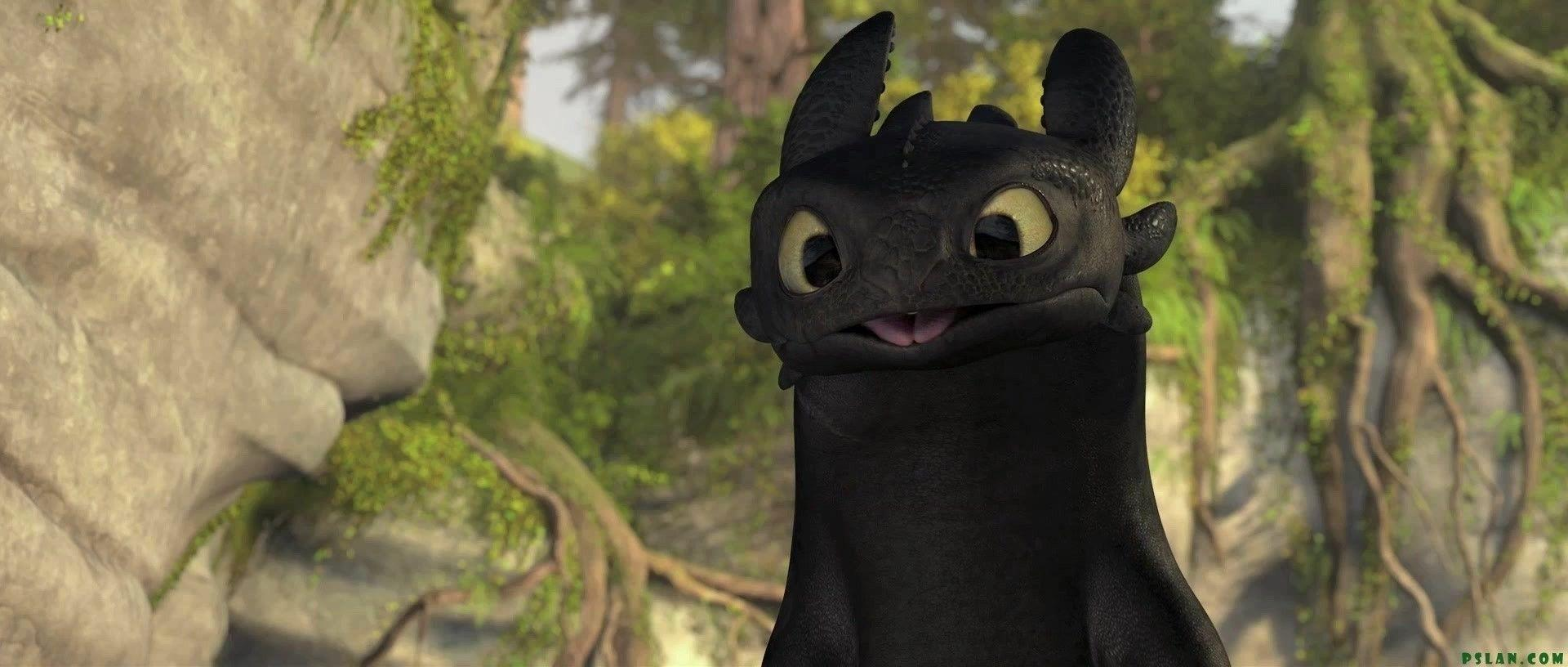 Toothless Pickie - Night Fury Photo (11062330) - Fanpop