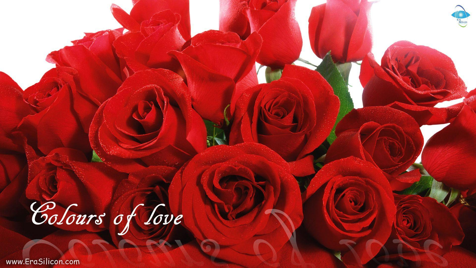 Love Flowers Wallpapers - Wallpaper cave