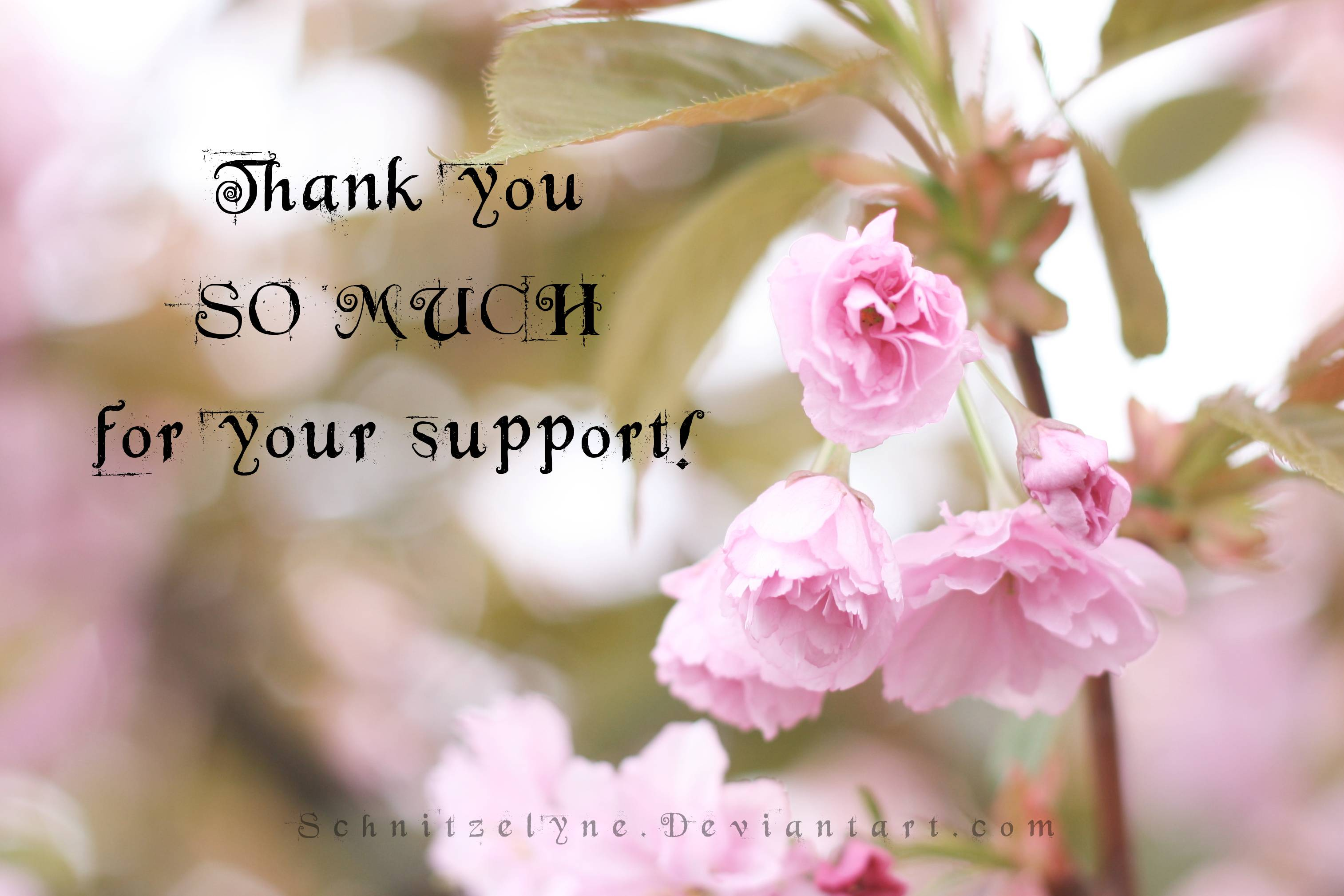 Thank you! + Wallpaper Download by Schnitzelyne on DeviantArt