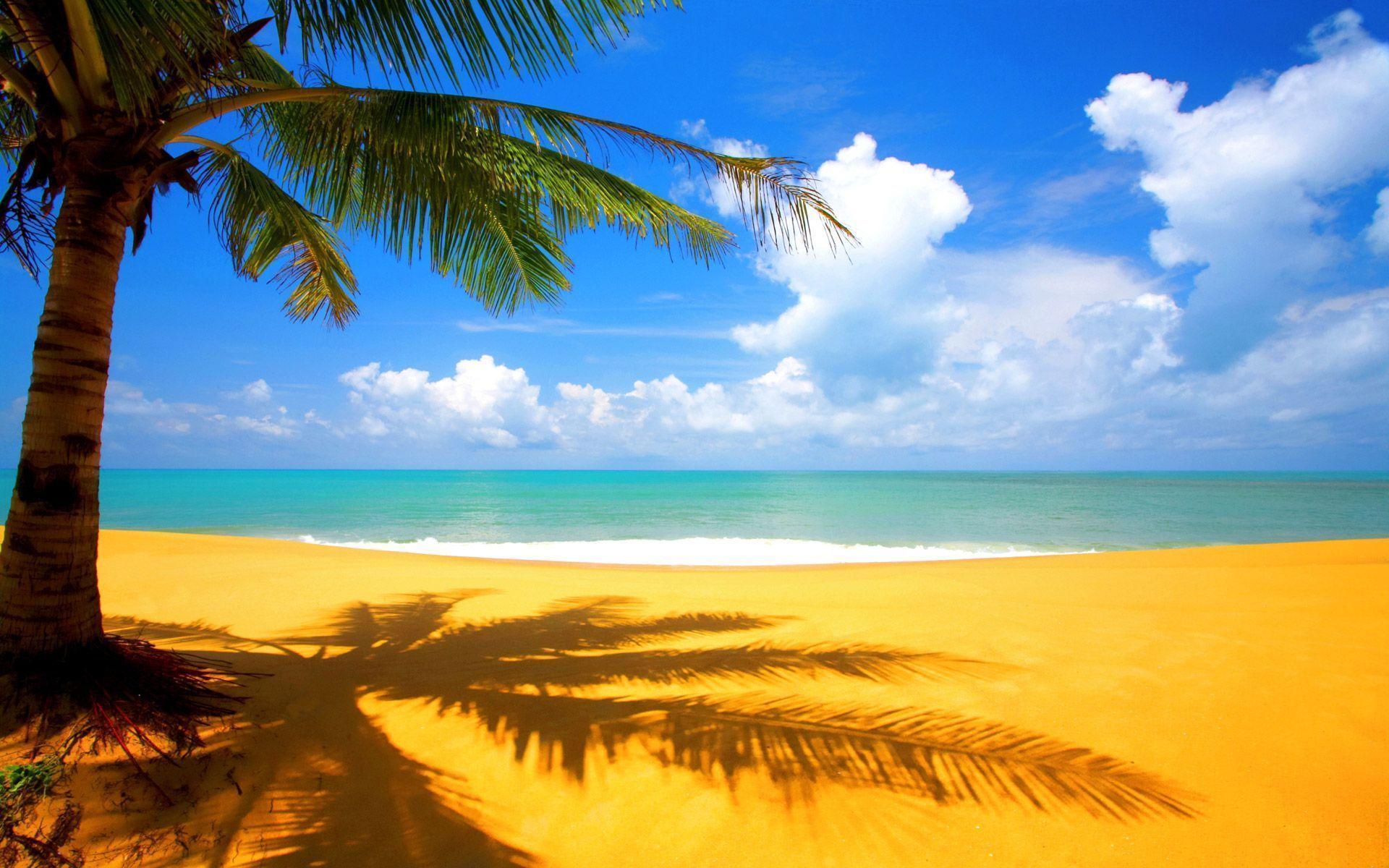 Beautiful Beach Scenery Wallpaper