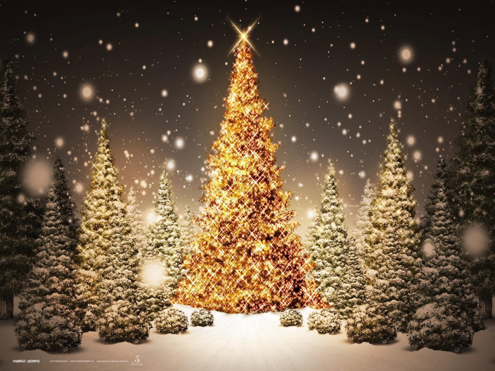 desktop wallpaper christmas tree