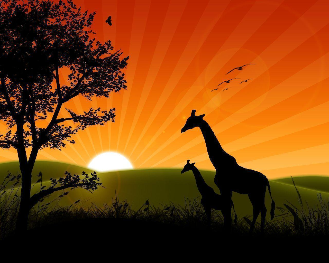 Sunrise Wallpaper Animated Hd Widescreen 11 HD Wallpapers | Eakai.