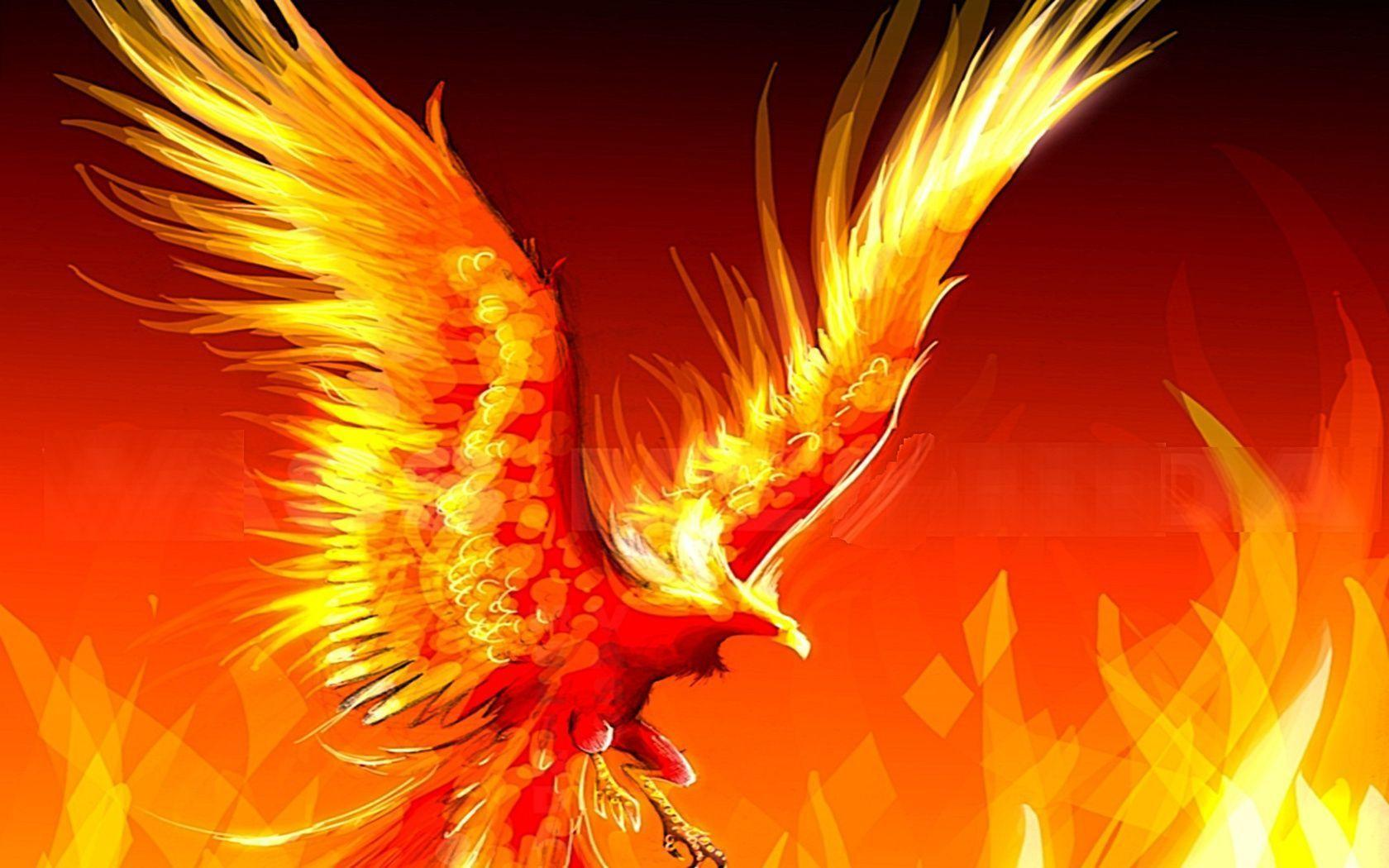 Phoenix Bird Wallpapers - Wallpaper Cave