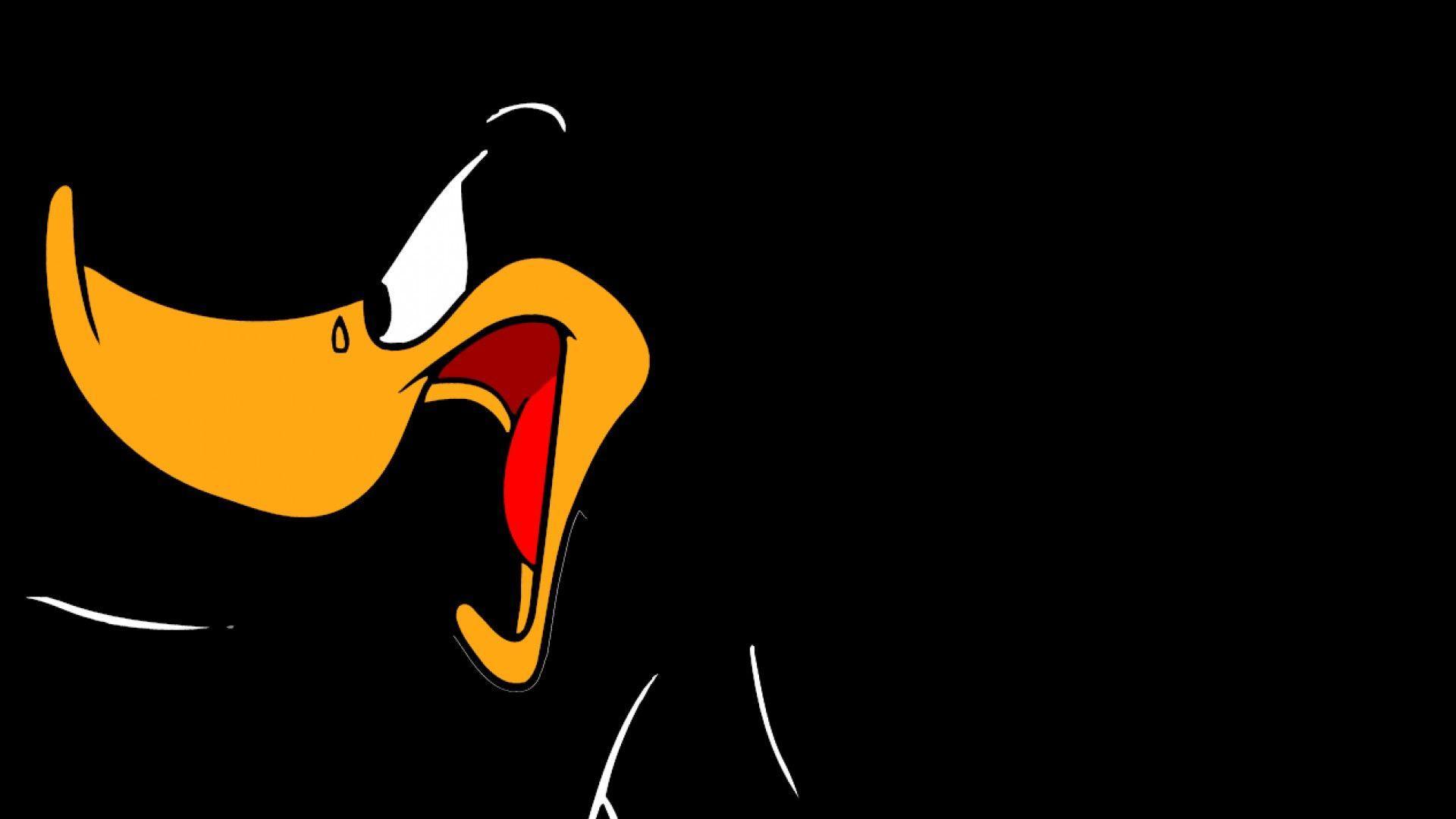 Daffy duck wallpapers wallpaper cave - Donald duck wallpapers for desktop ...