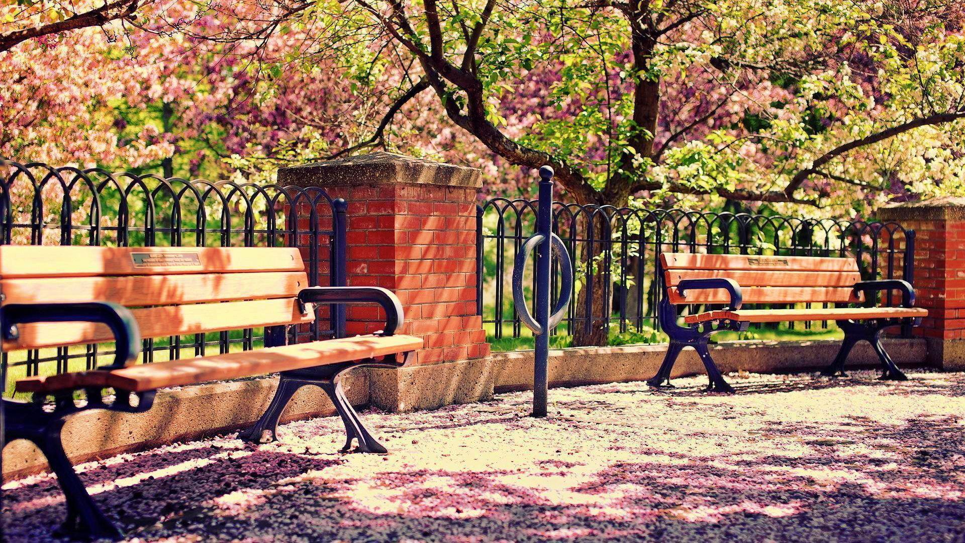 best nature1920x1080 iimgurcom - photo #43