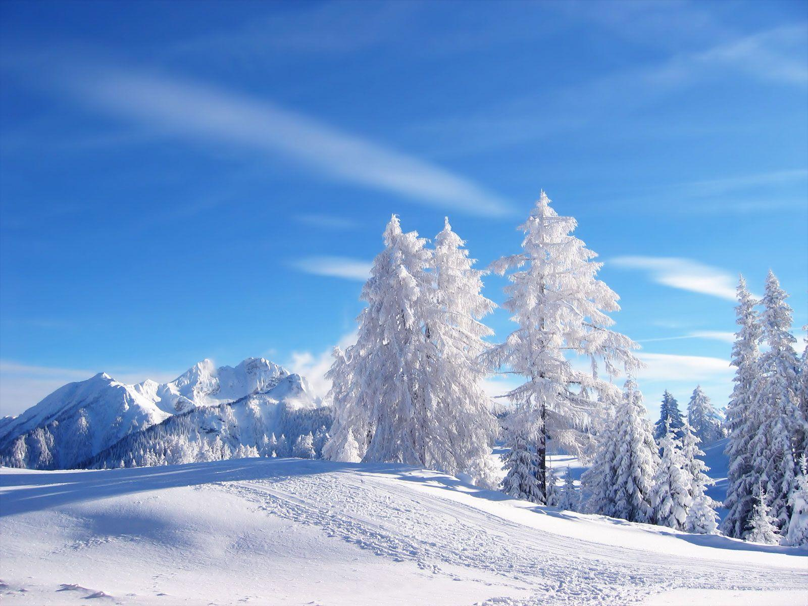Snowy scenes wallpapers wallpaper cave winter scene wallpapers voltagebd Image collections