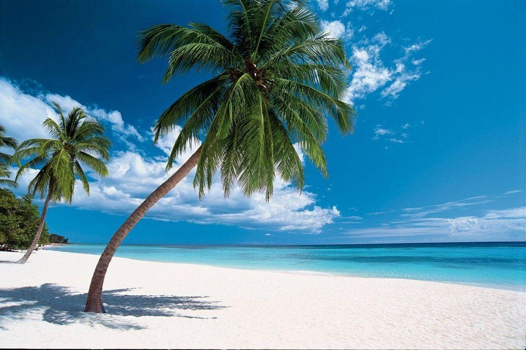 Free caribbean beach wallpapers wallpaper cave - Dominican republic wallpaper ...