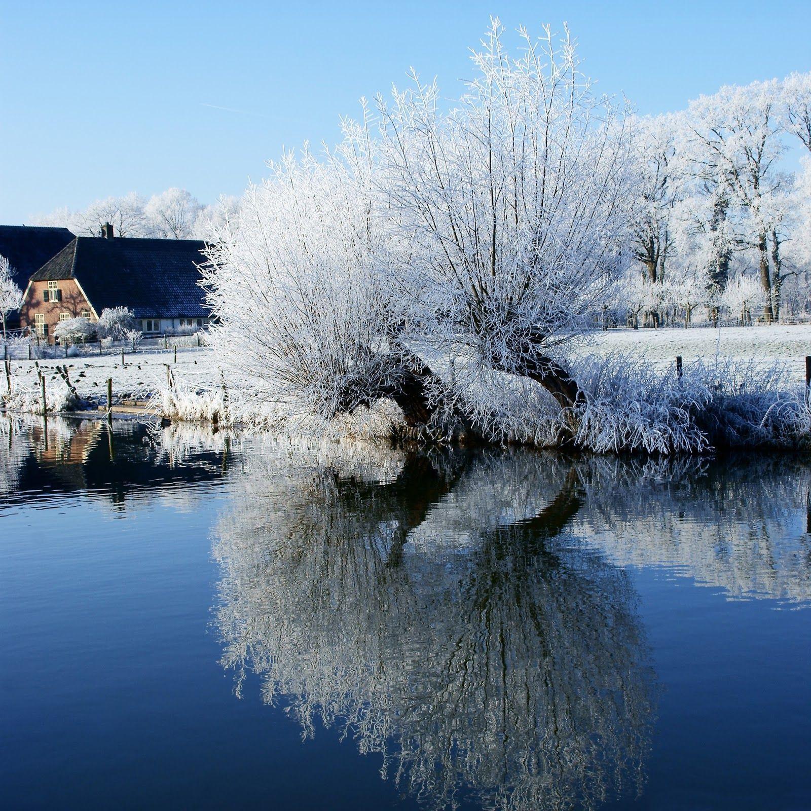 Winter Wallpaper: Winter Themed Wallpapers