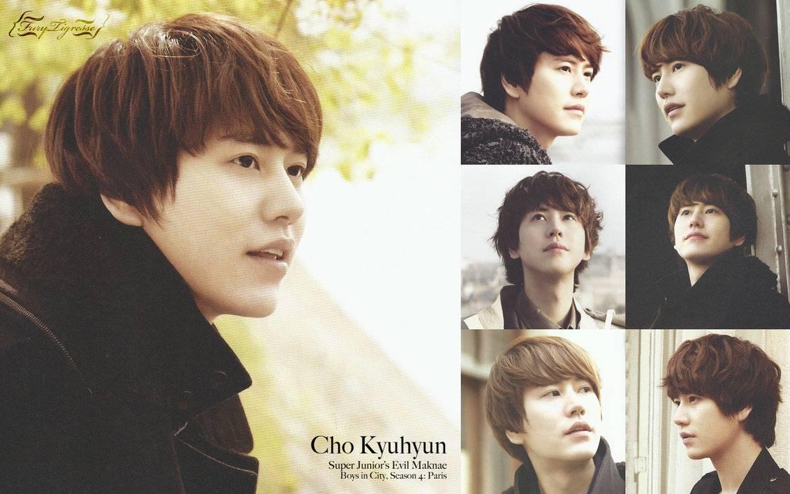 Kyuhyun Super Junior 2015 Wallpapers Wallpaper Cave