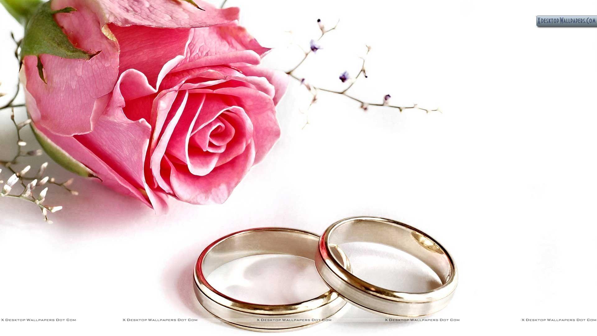 25Th Wedding Anniversary Invitations Online for luxury invitation template