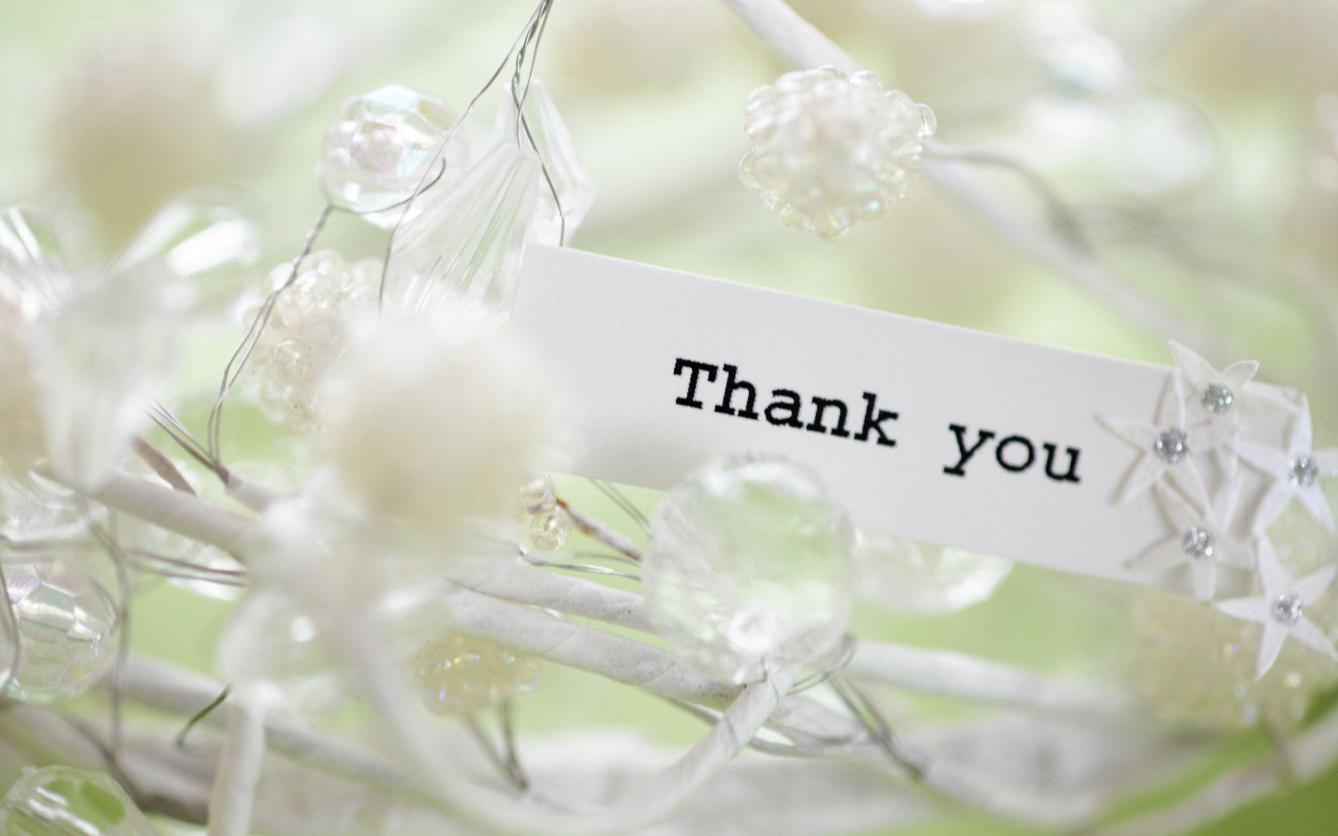 Wallpapers For > Thank You Wallpaper Free Download