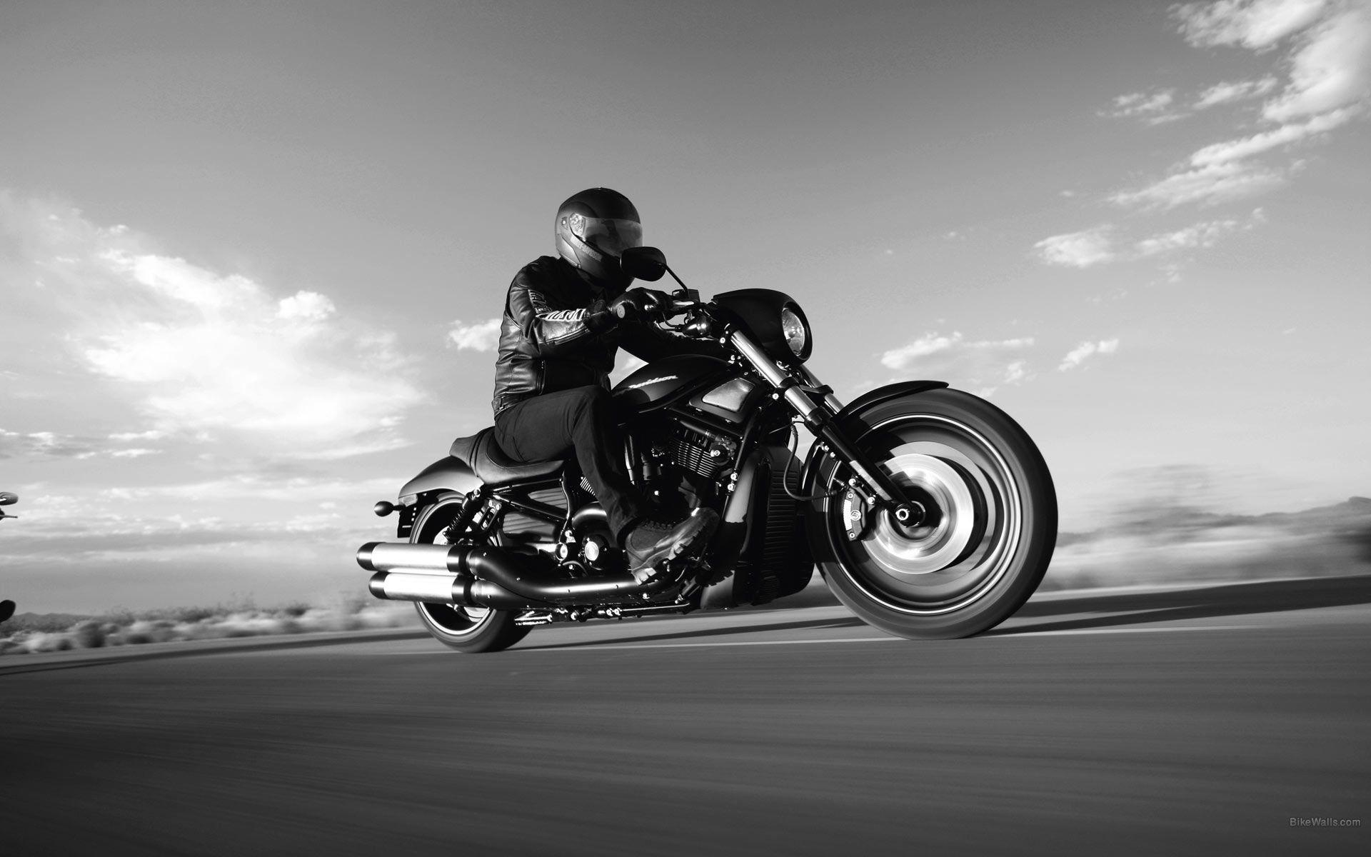 Harley Davidson Night Rod wallpaper - 981371