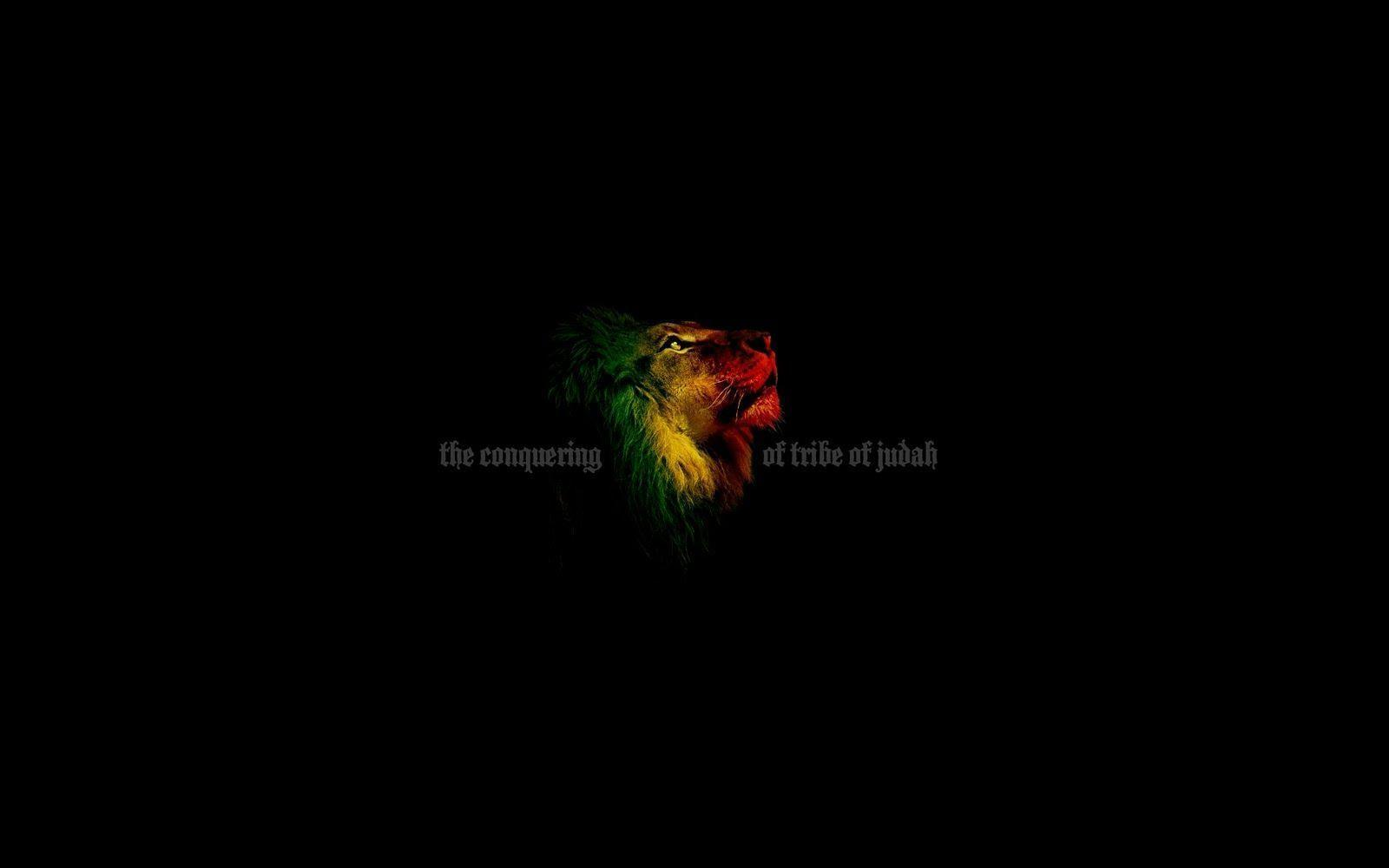 Lion Of Judah Rasta Wallpapers