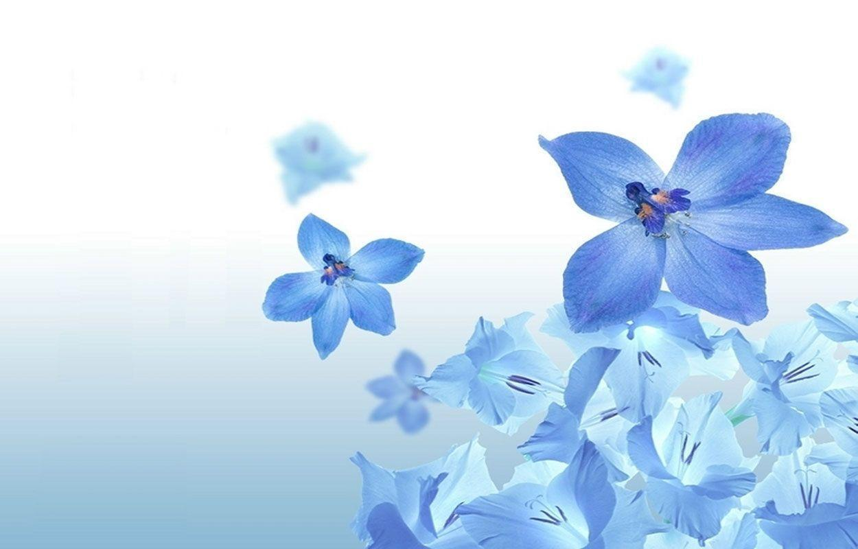 Pretty Blue Backgrounds - Wallpaper Cave
