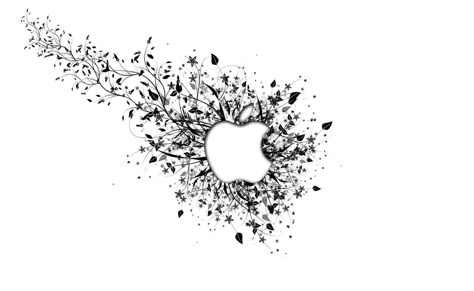 Apple White Wallpapers