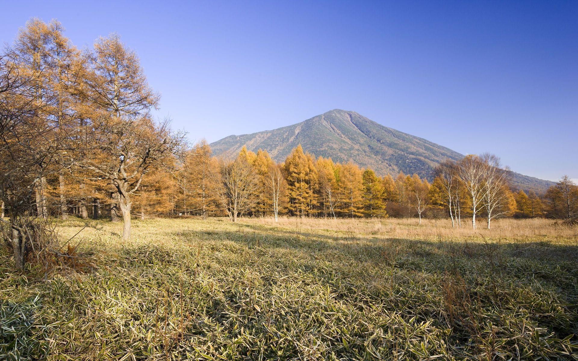 Hokkaido wallpaper - 984535