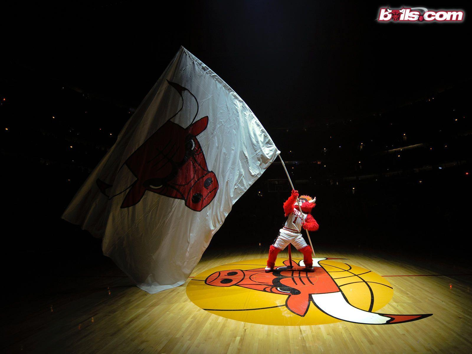 Bull Wallpapers Group With 61 Items: Chicago Sports Wallpapers
