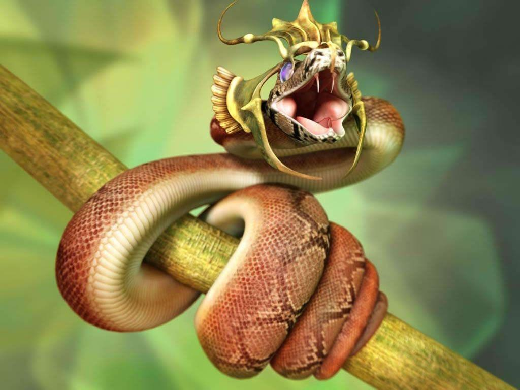 Snakes Hd Wallpapers Wallpapers 1024x768PX ~ Wallpapers Cool Snake