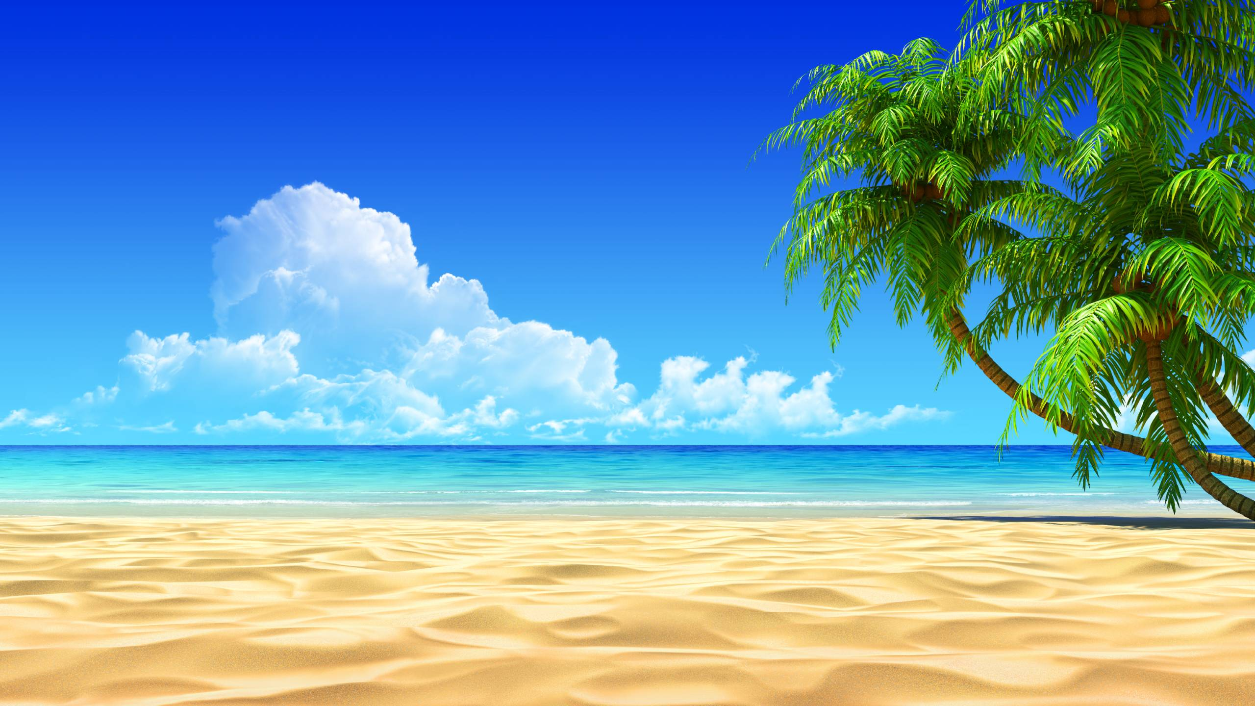 Http Wallpapercave Com Free Tropical Desktop Backgrounds