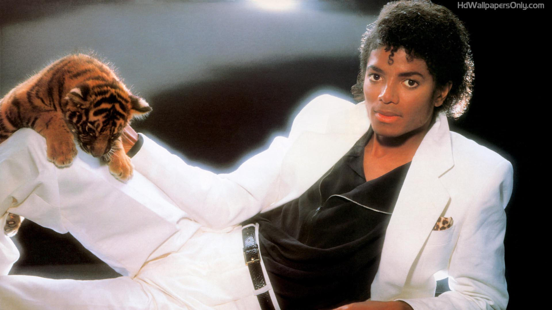 Michael Jackson - Thriller - Download Music Video Clip from VOB ...