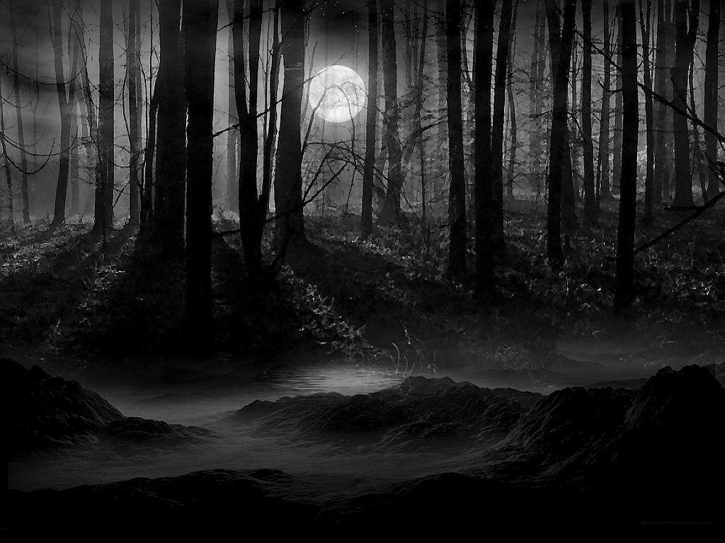 Dark Night Full Moon Wallpaper and Picture | Imagesize: 251 kilobyte