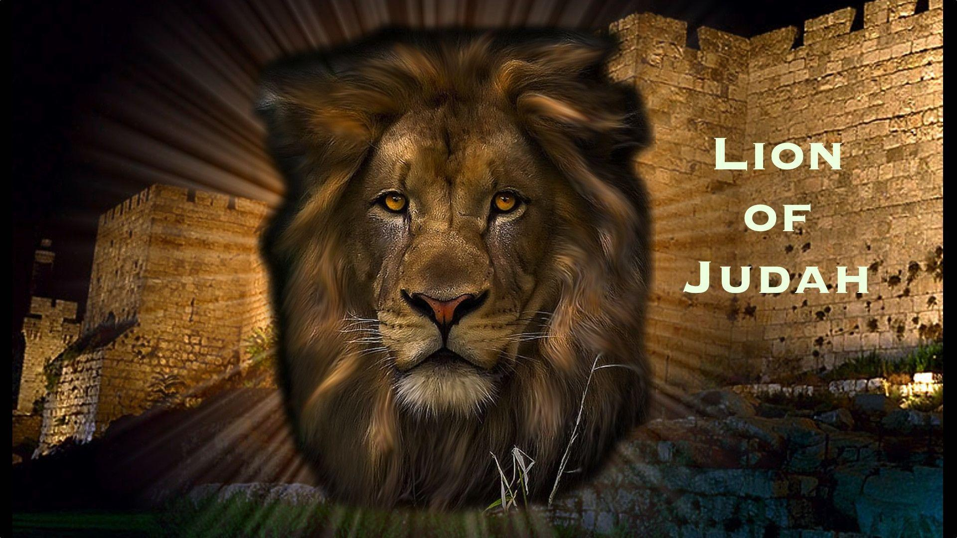 Lion Of Judah Jesus Wallpapers