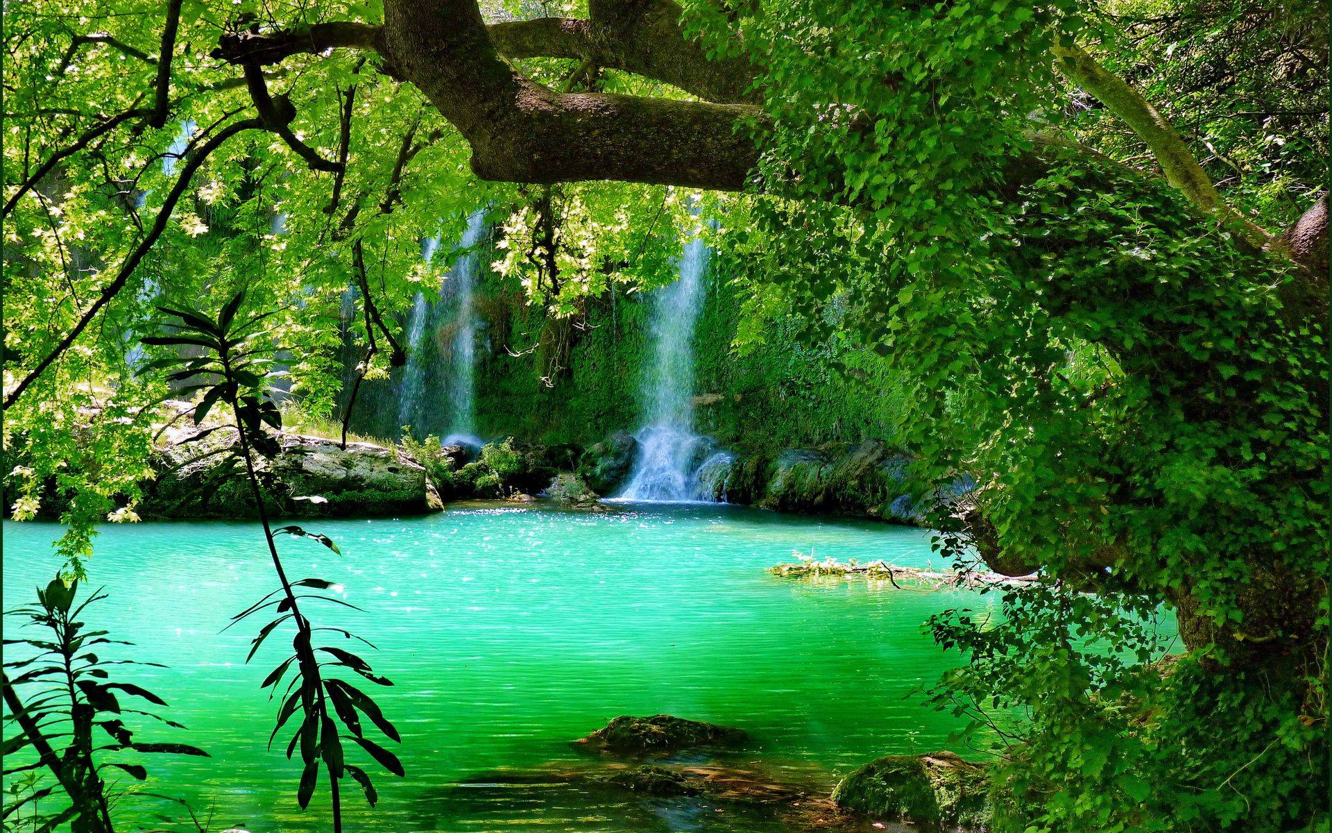 Forest waterfall wallpapers wallpaper cave for Waterfall design definition