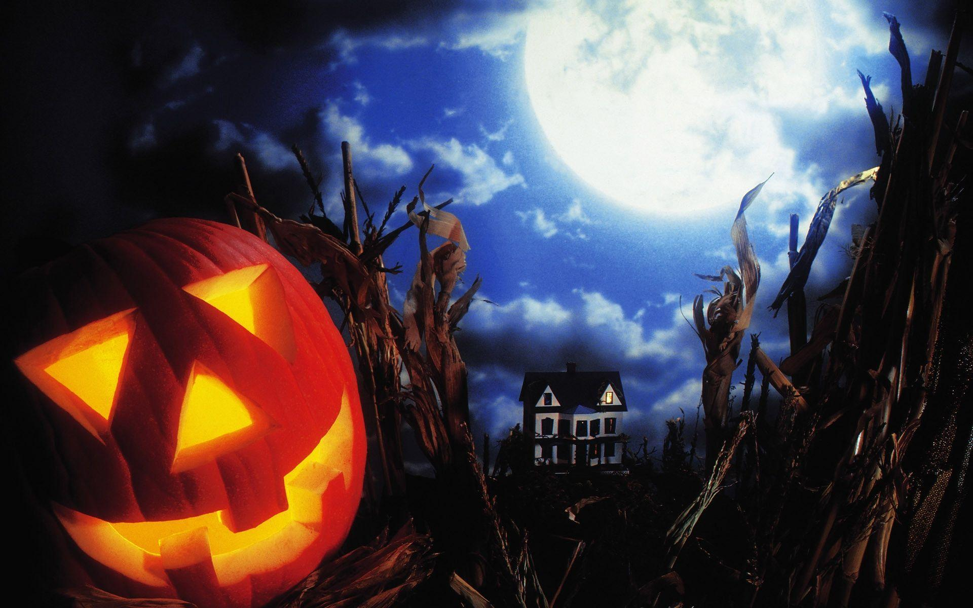 Trick Or Treat Wallpapers Wallpaper Cave