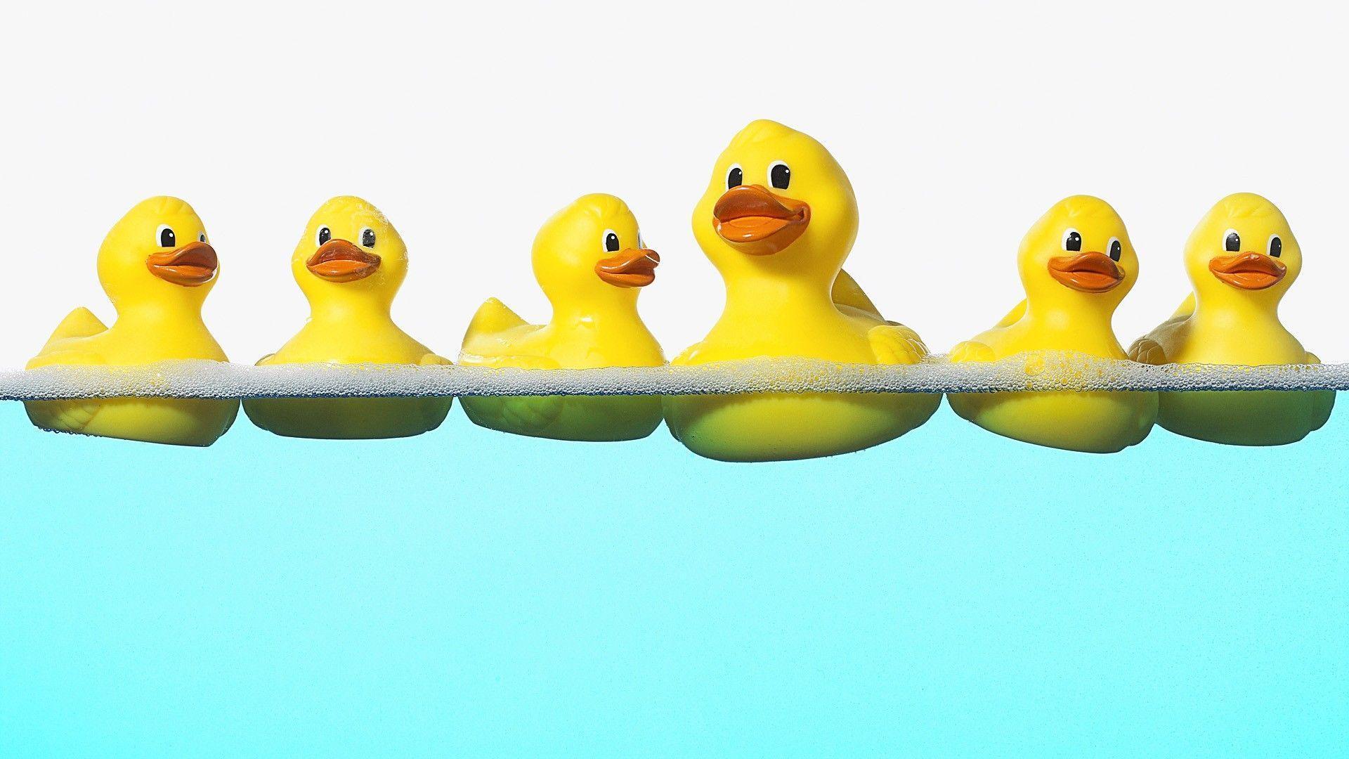 rubber duck wallpaper - photo #2