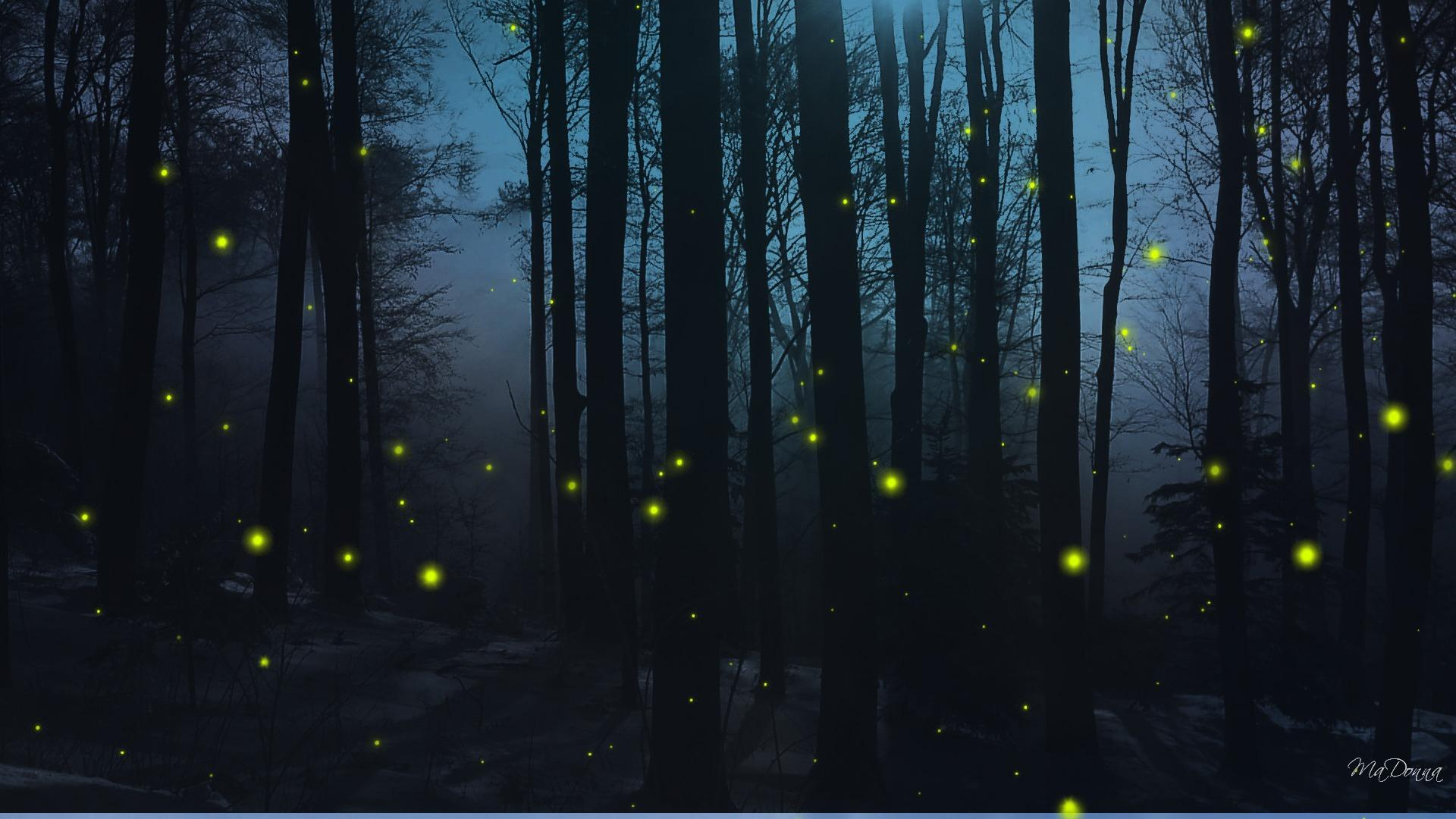 http://wallpapercave.com/fireflies-wallpaper
