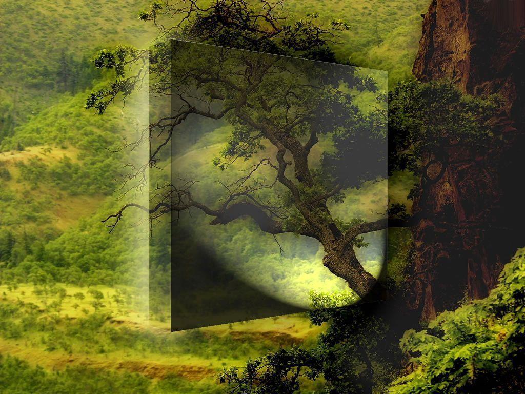 اروع صور من الطبيعة Best Nature Wallpapers Xxvh9LC
