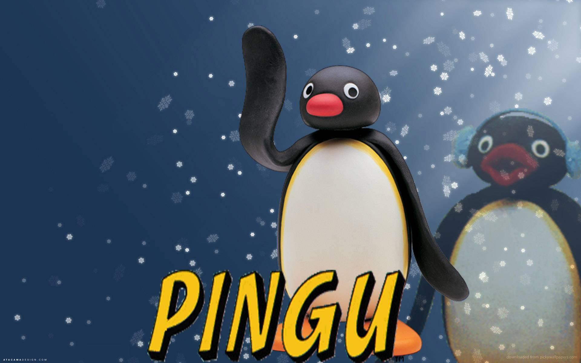 Pingu Wallpapers Wallpaper Cave