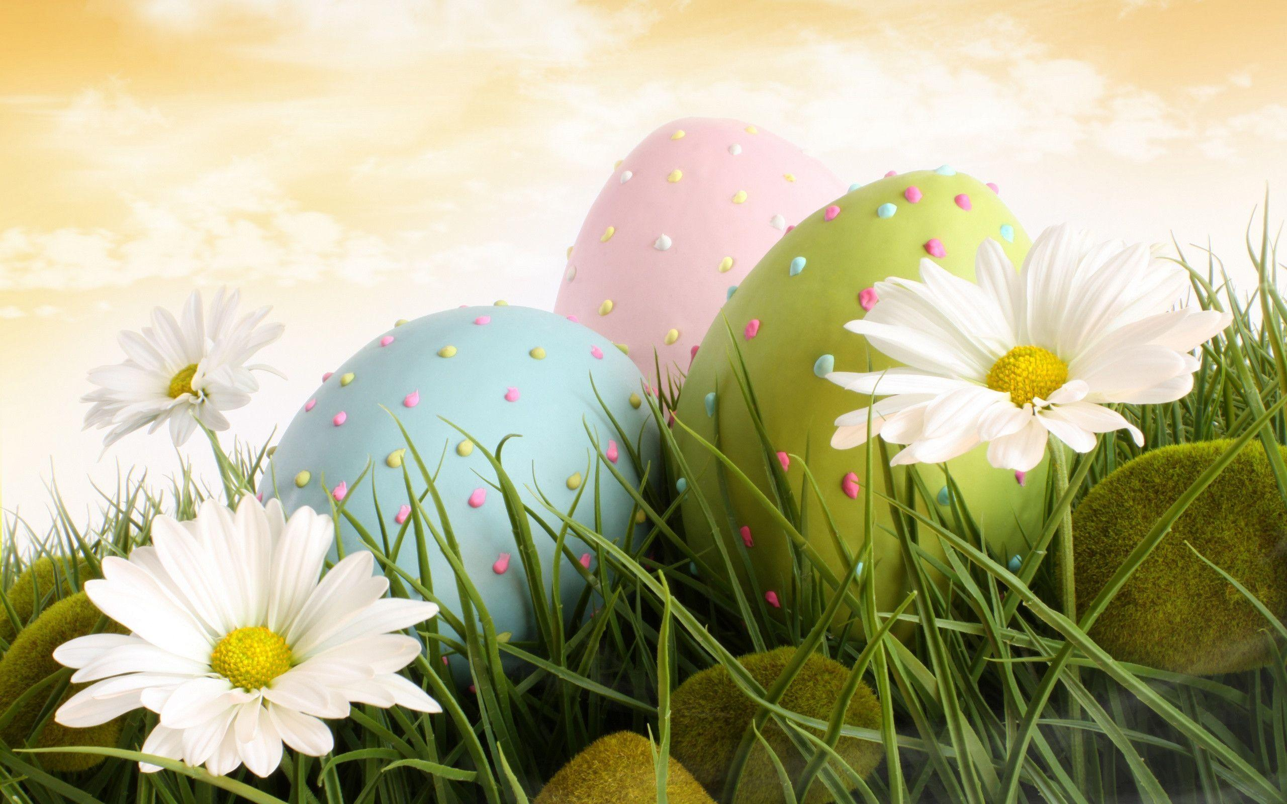 Dream Spring 2012 - easter Wallpapers - HD Wallpapers 96616