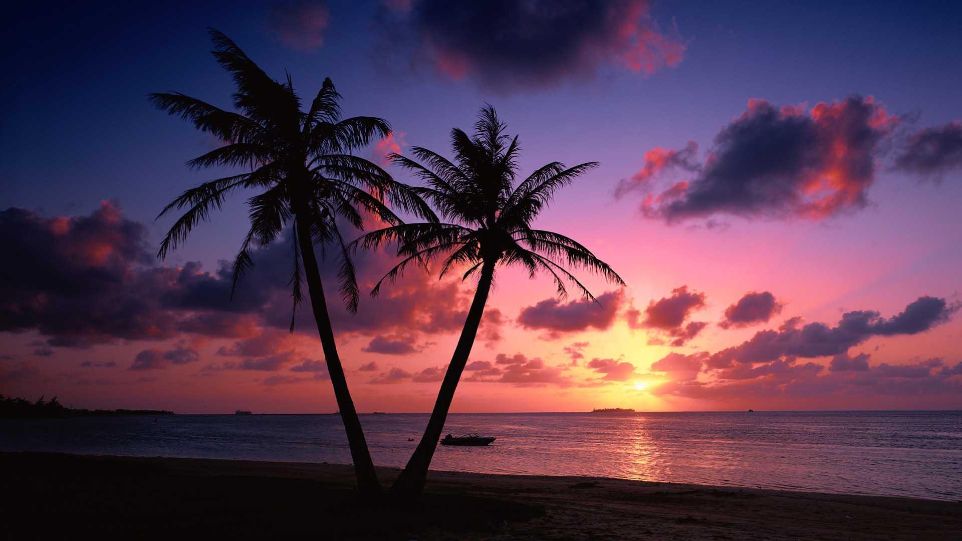 pink beach sunset wallpaper for desktop 14 hd wallpaperscom