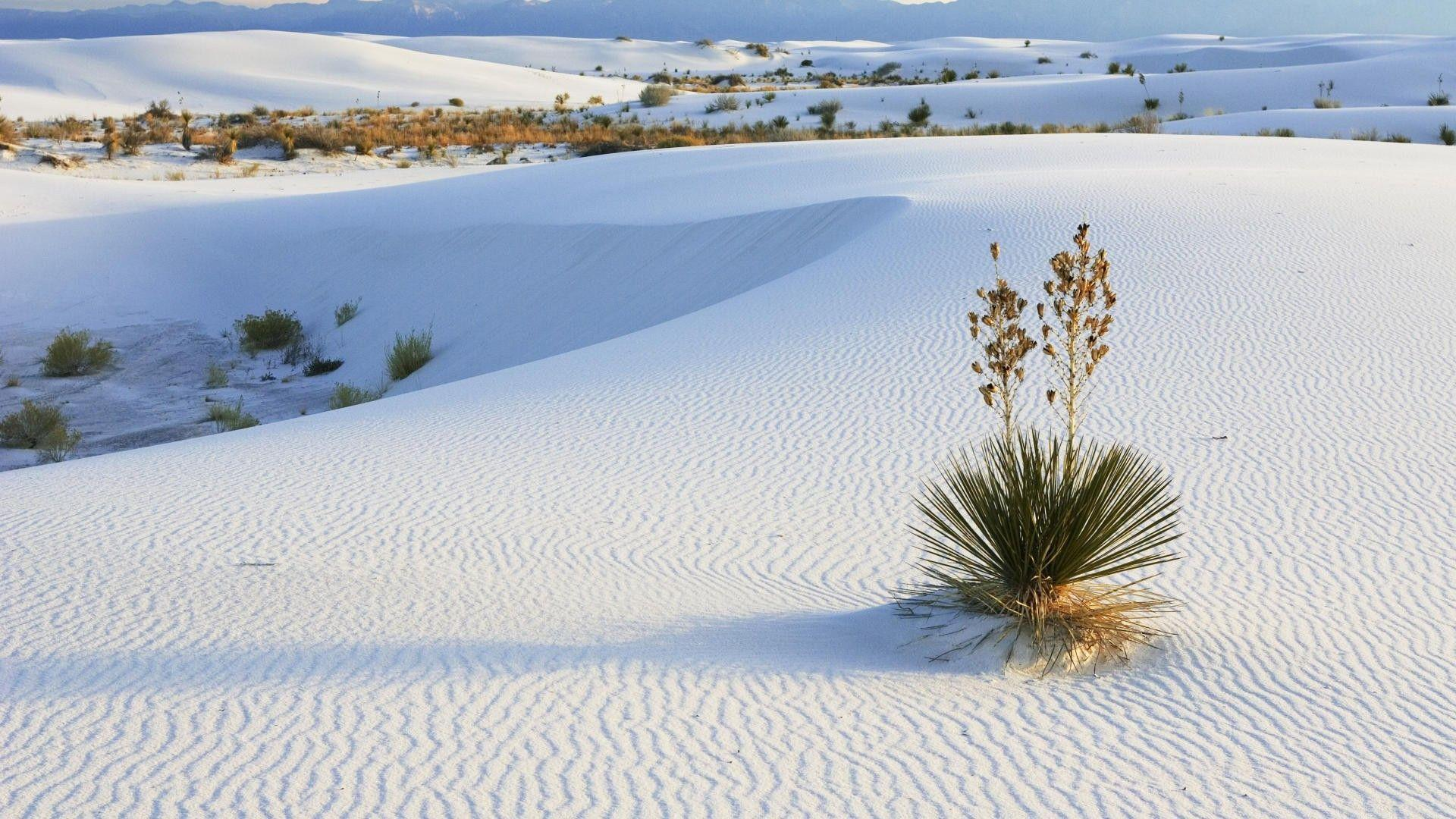 white sand wallpaper - photo #1