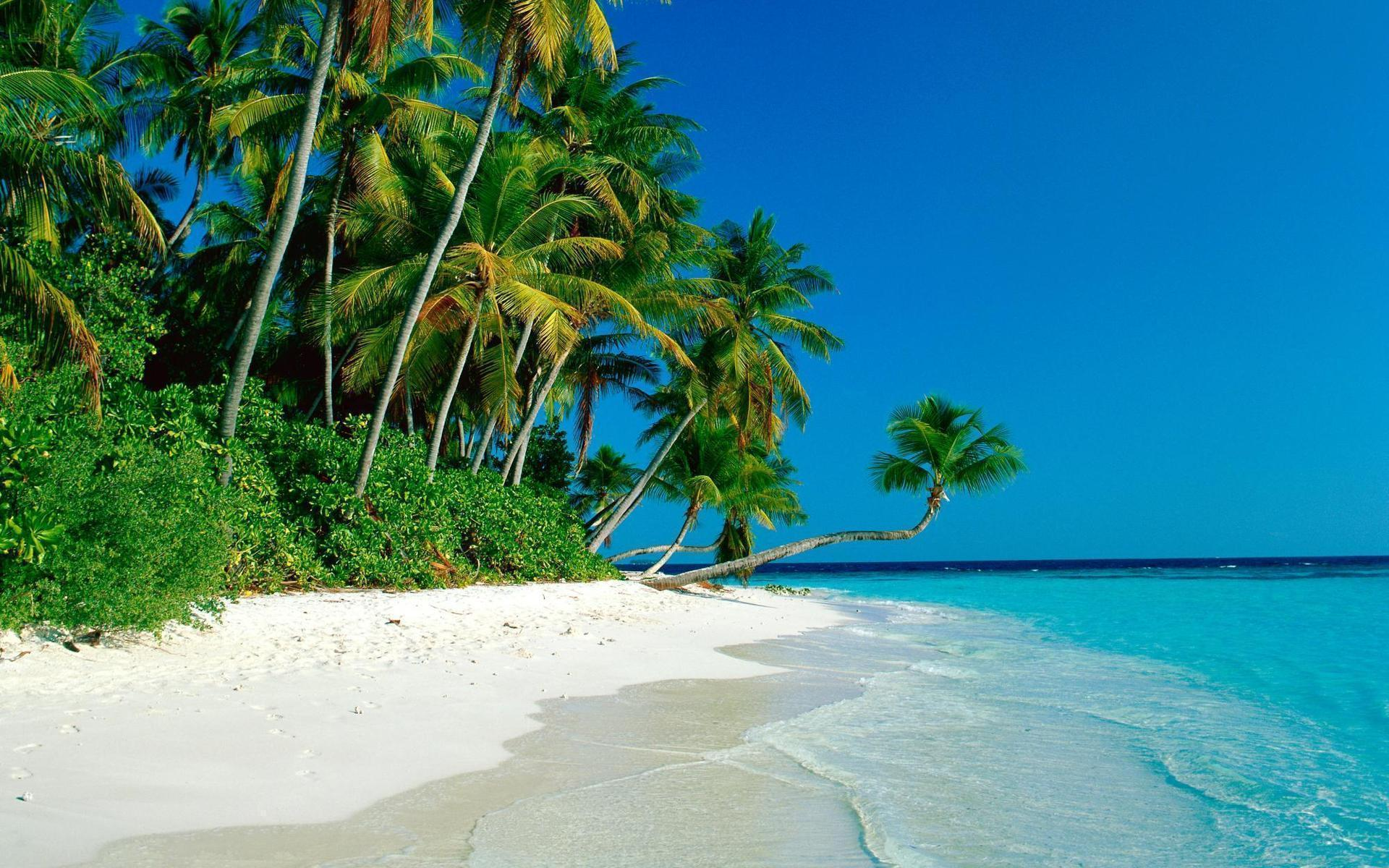 Hd Tropical Island Beach Paradise Wallpapers And Backgrounds: Tropical Island Wallpapers