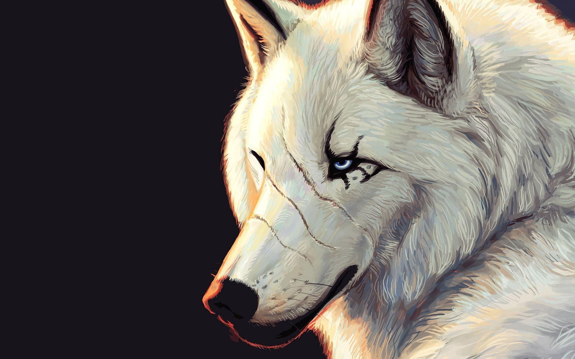 White wolf art Wallpapers