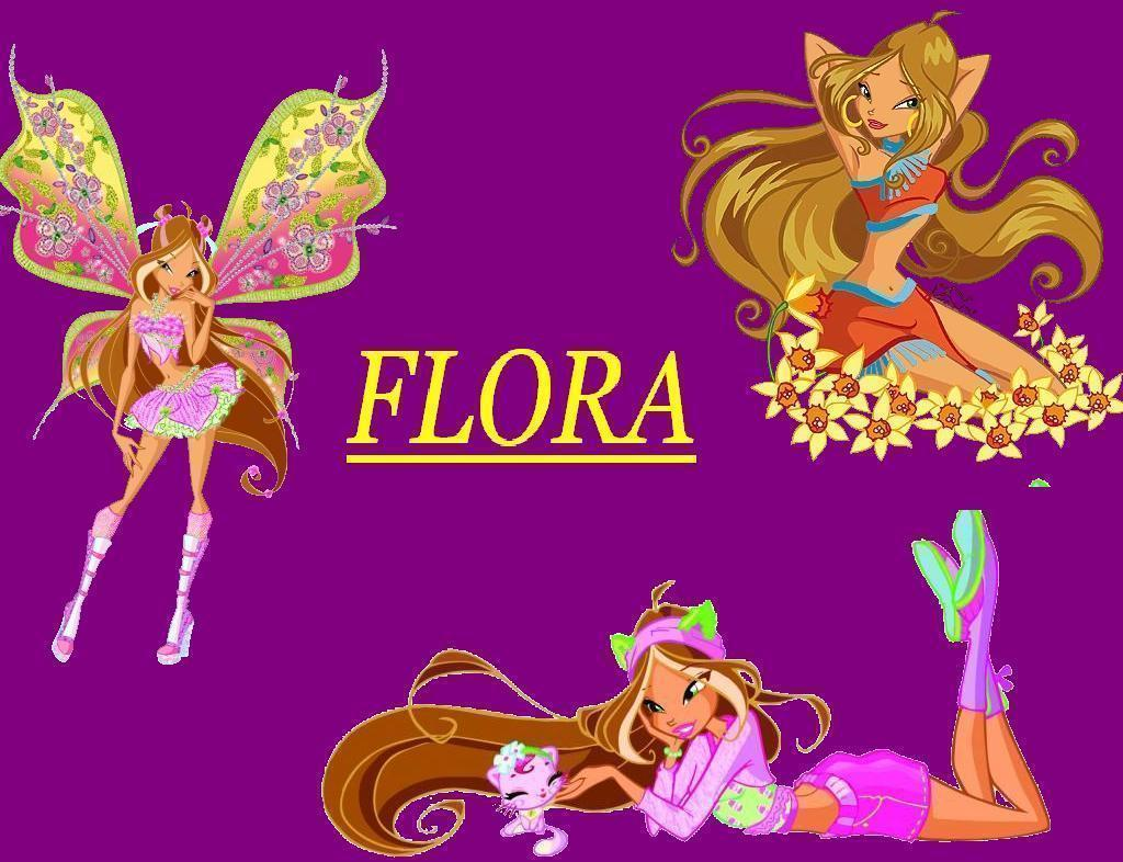 winx club wallpapers wallpaper cave