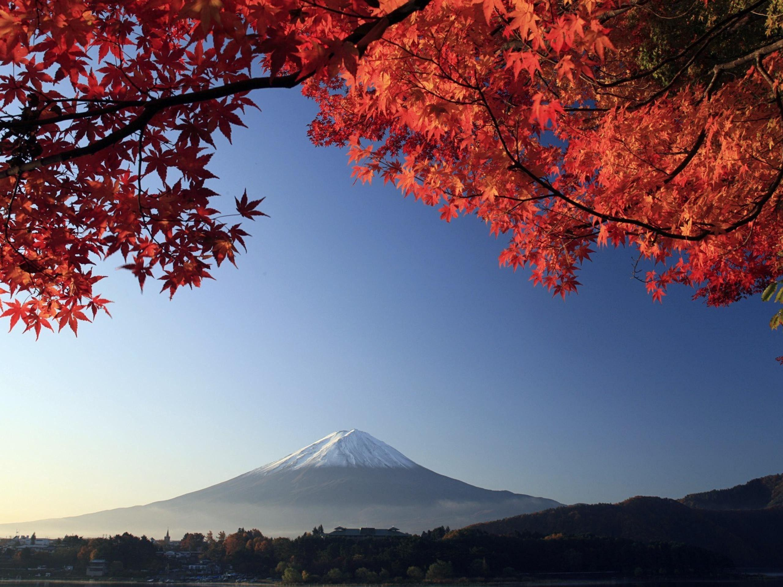 Wallpapers For > Japanese Landscape Wallpapers