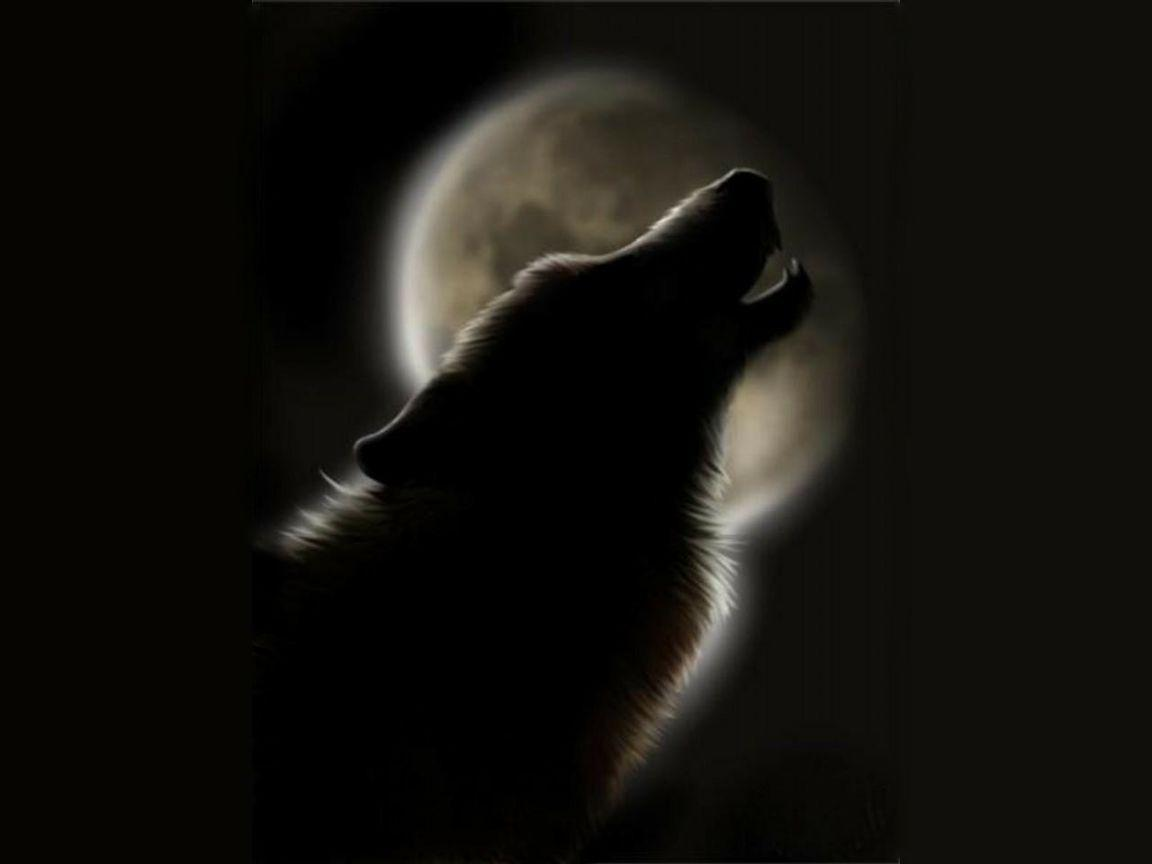 Howling Wolf Wallpapers - Wallpaper Cave