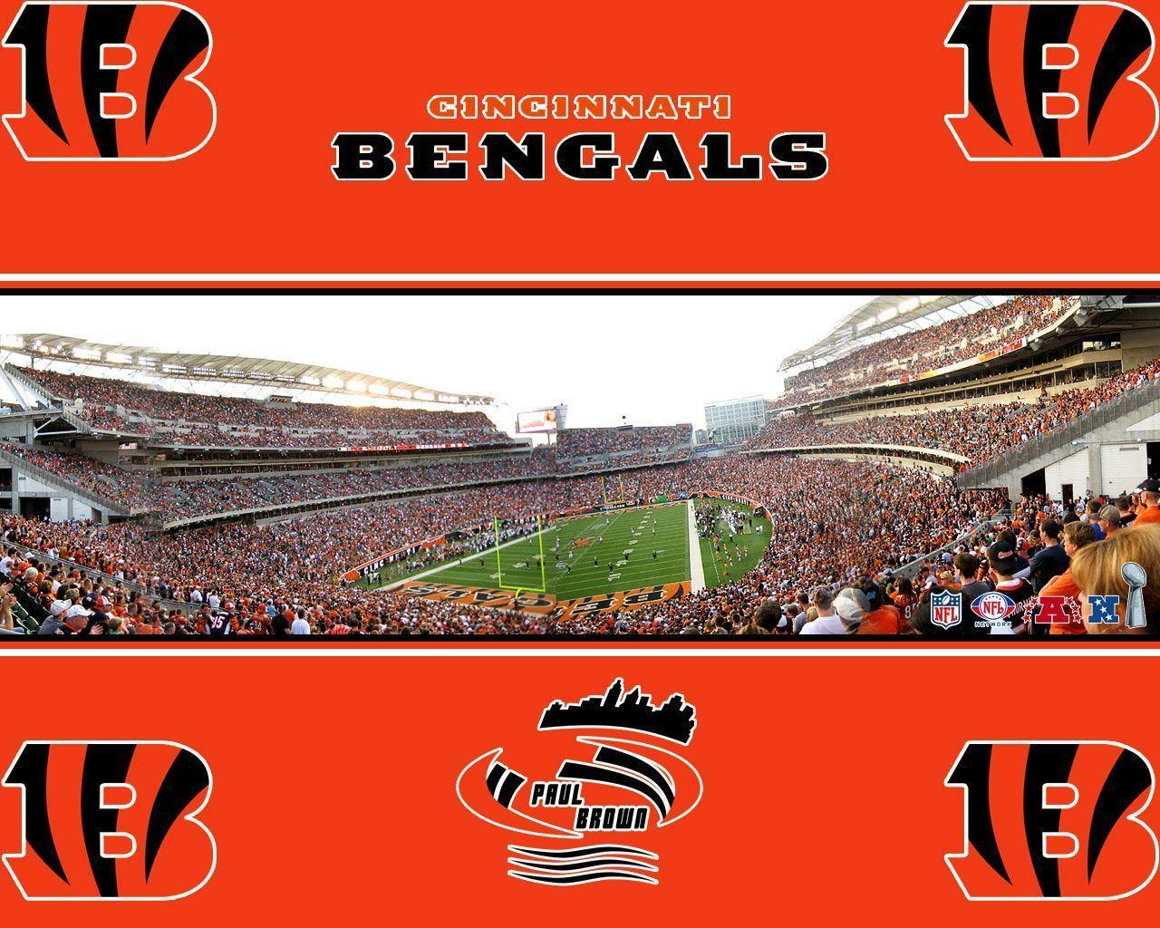 Cincinnati Bengals stadium wallpaper