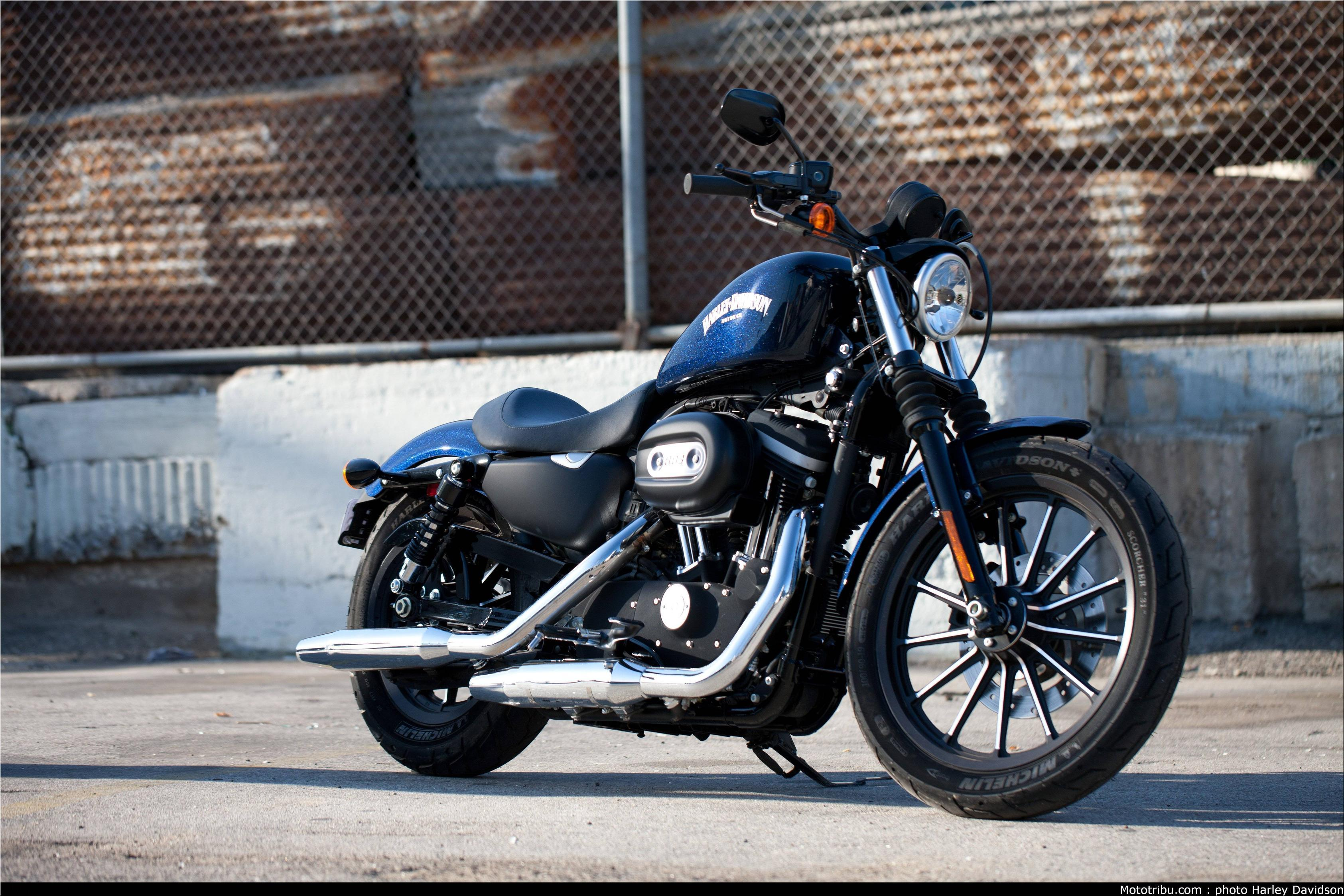 Wallpapers 2015 Harley Davidson Iron 883