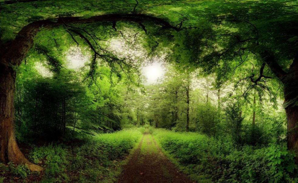 hd natural image beautiful - photo #36