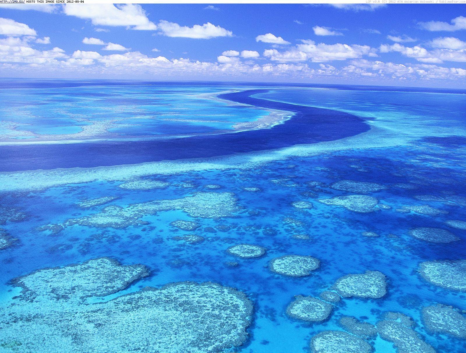 Great Barrier Reef Wallpapers Wallpaper Cave HD Wallpapers Download Free Images Wallpaper [1000image.com]