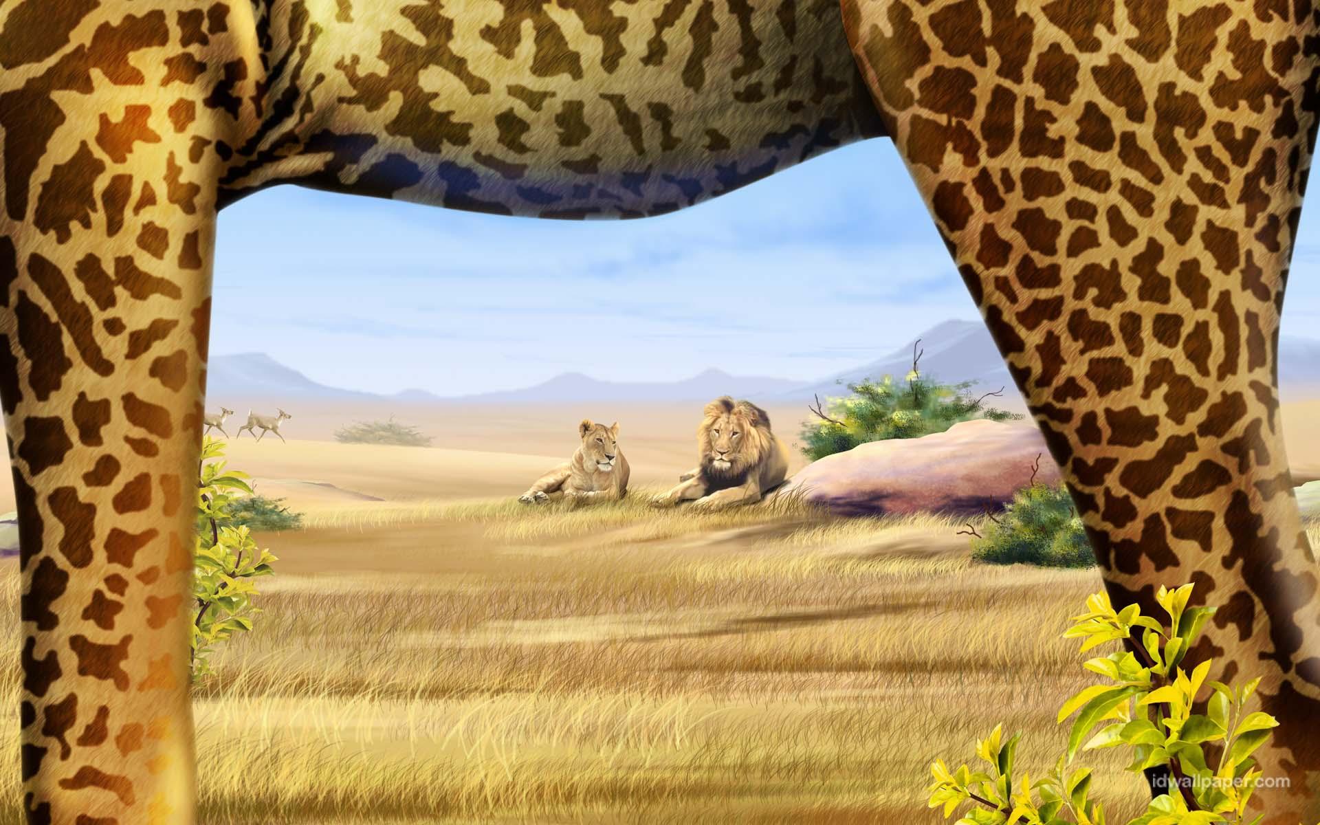 1 Safari Wallpapers | Safari Backgrounds