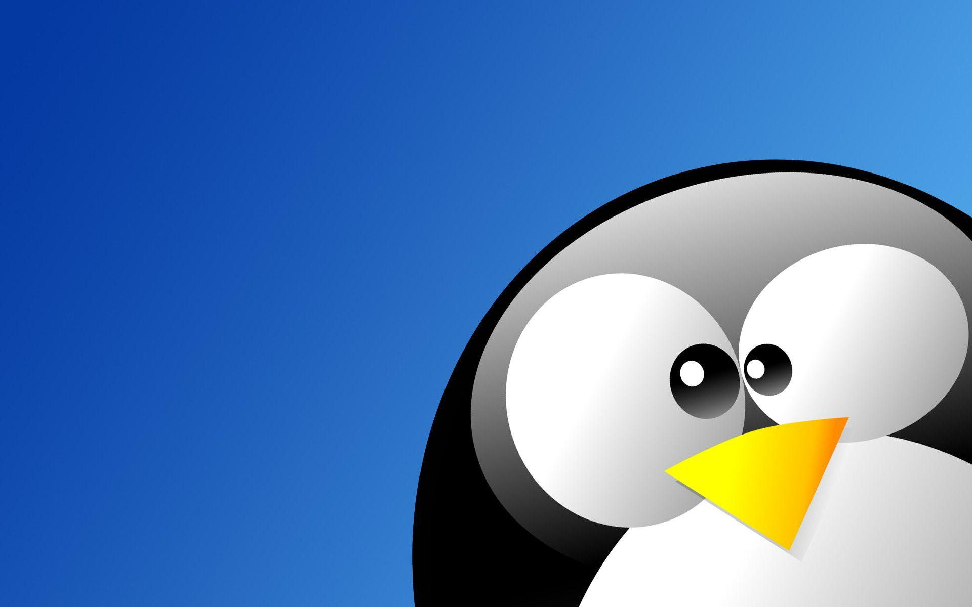 linux tux wallpapers wallpaper cave