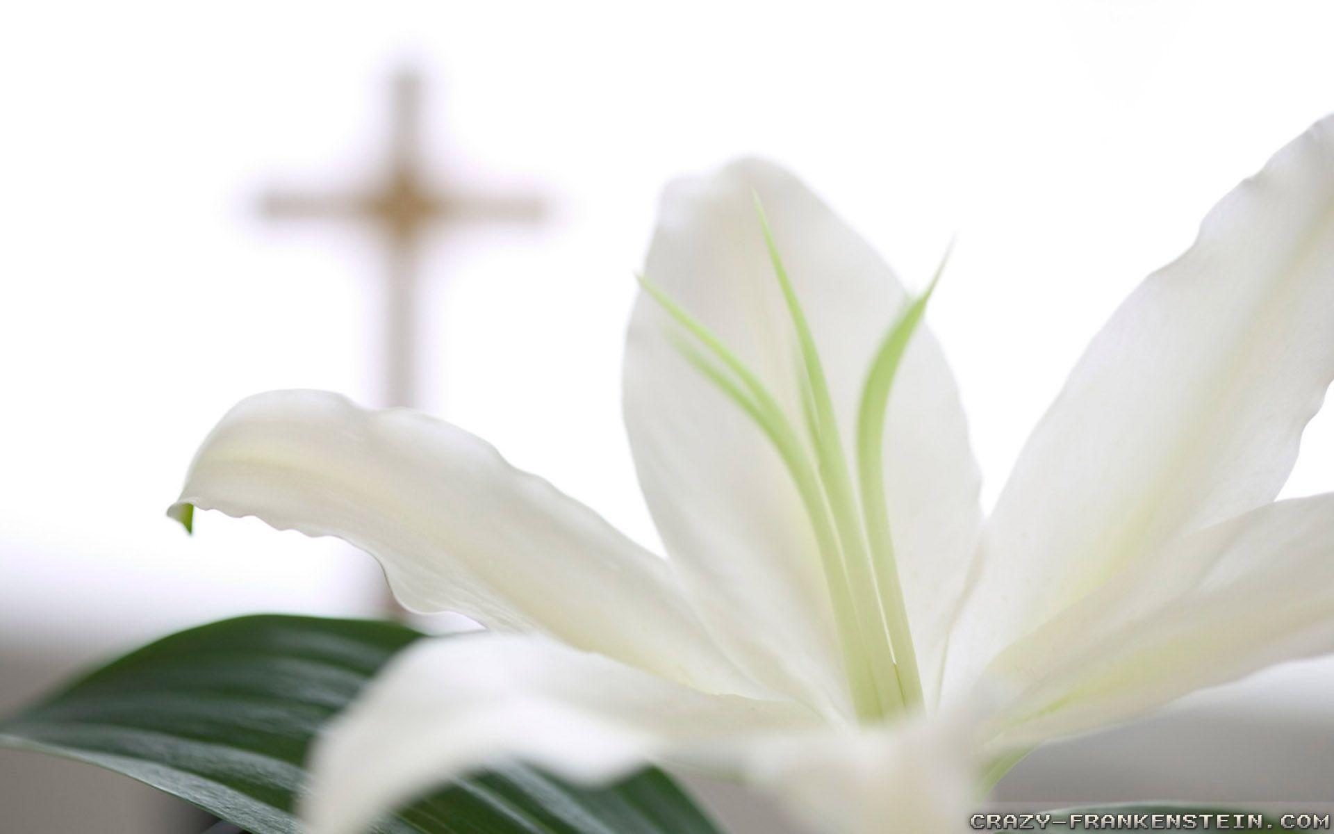 Religious Easter Wallpaper Background HD