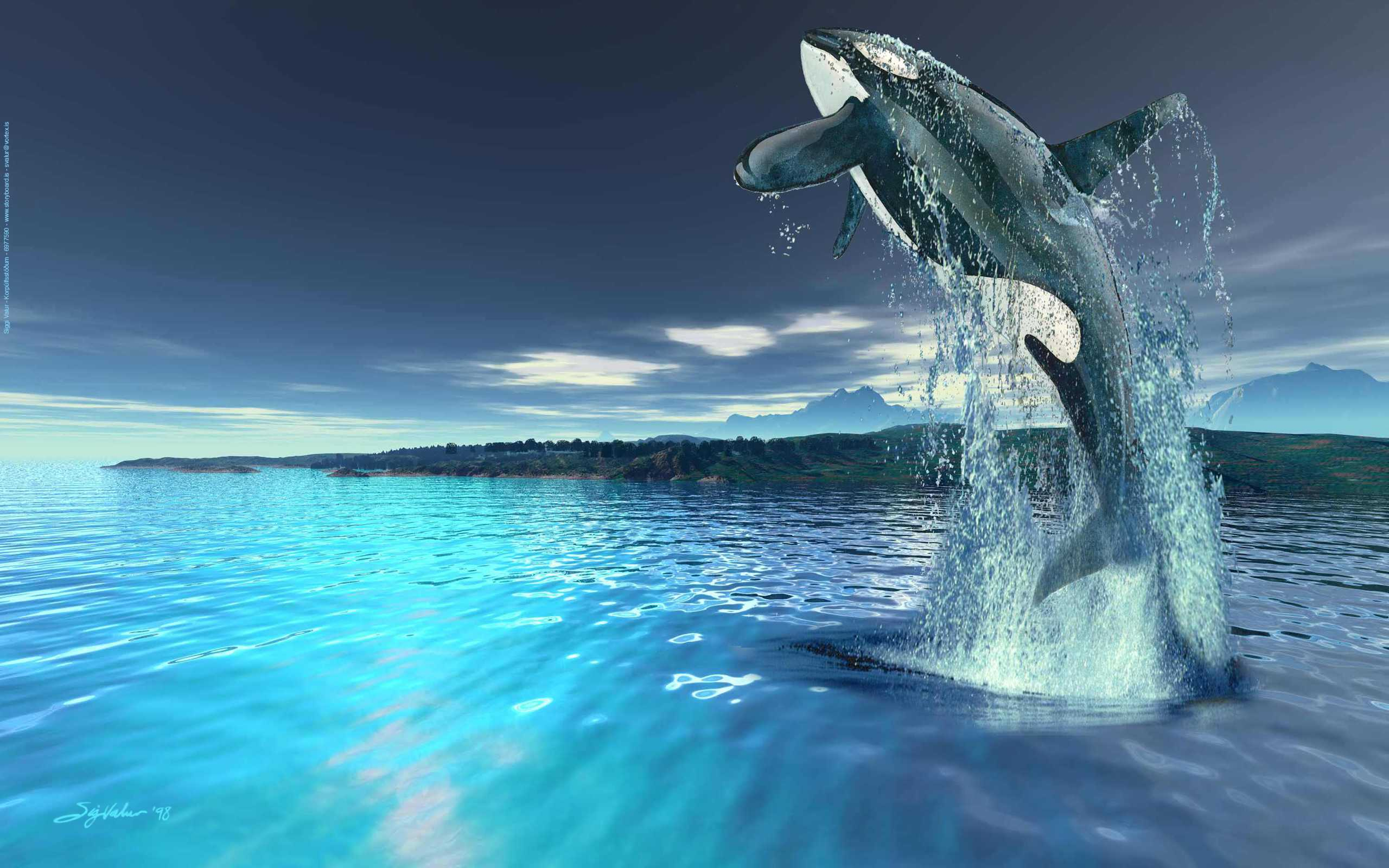 Whale wallpaper - photo#11