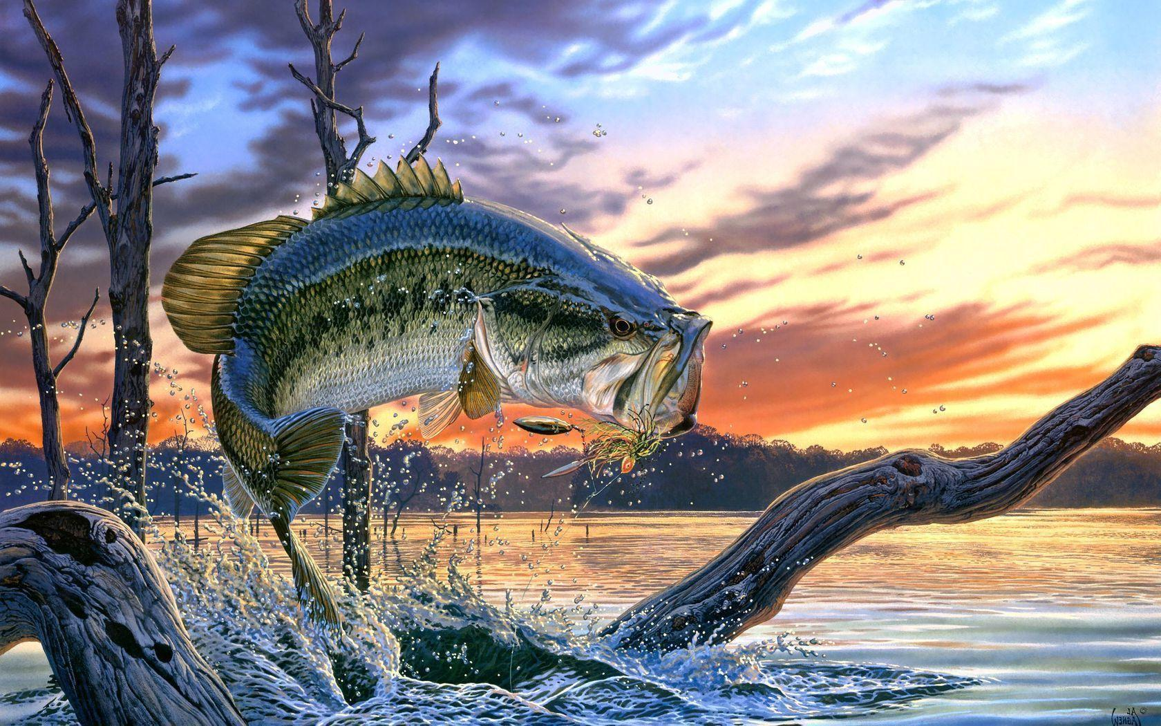 bass boat fishing wallpaper backgrounds - photo #4
