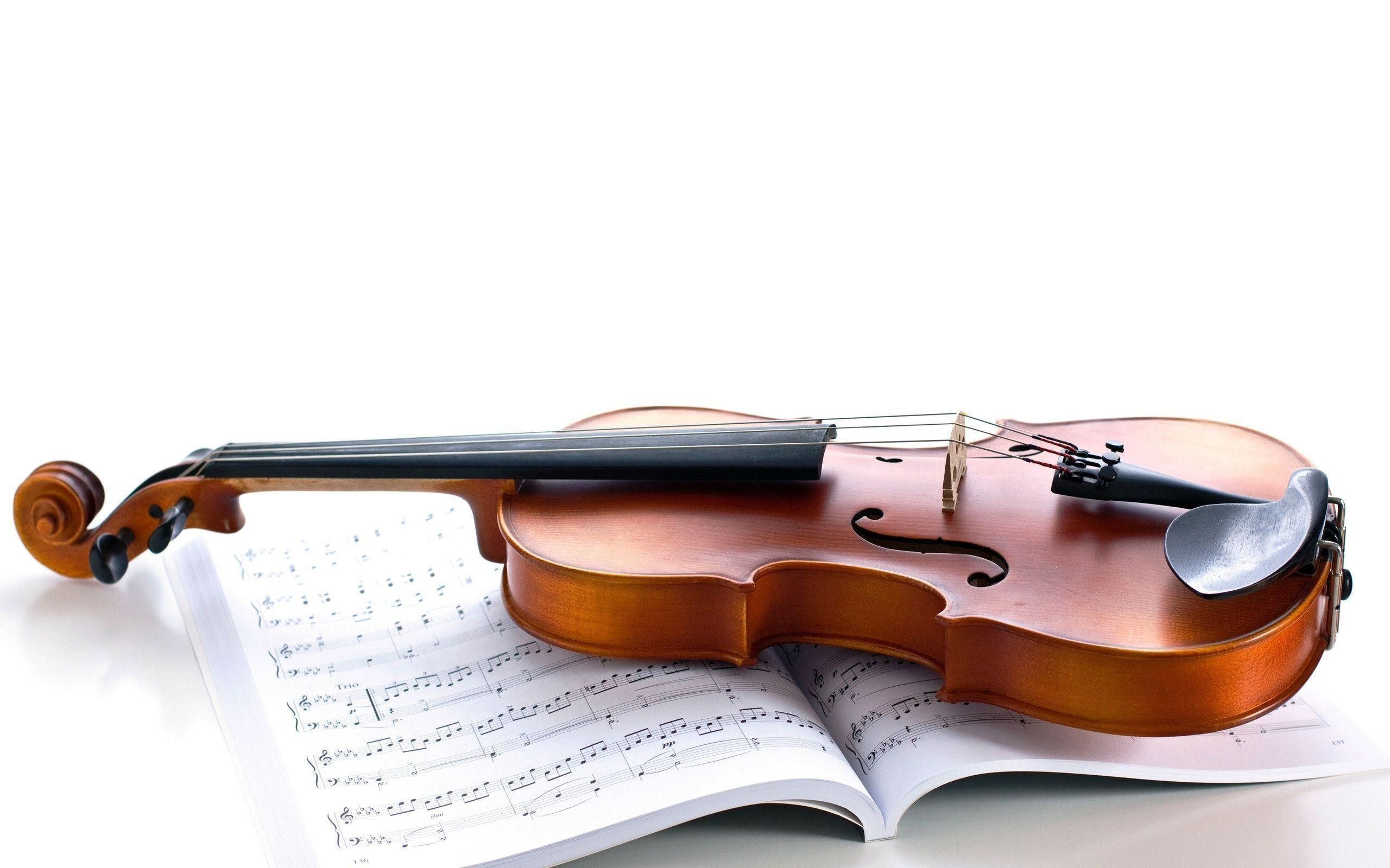 Violin Computer Wallpapers, Desktop Backgrounds 2560x1600 Id: 293568